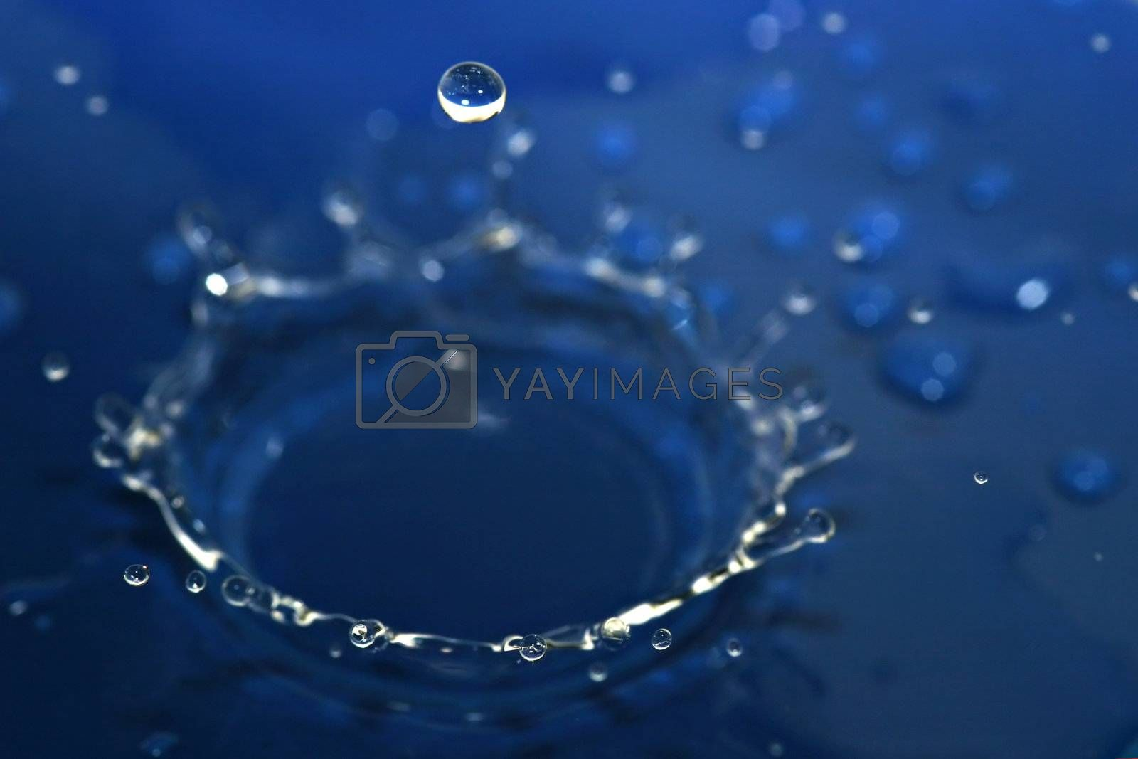 Blue water crown and bubble drop