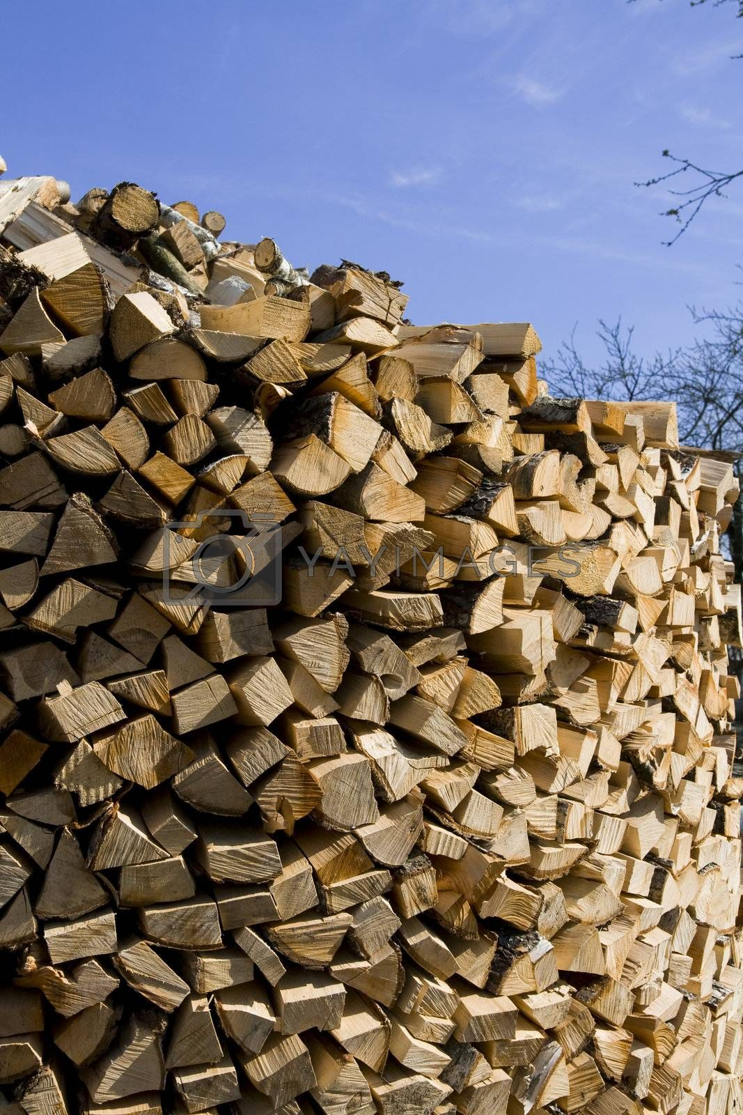 Cut, split and stacked firewood and blue sky. Lithuanian farm