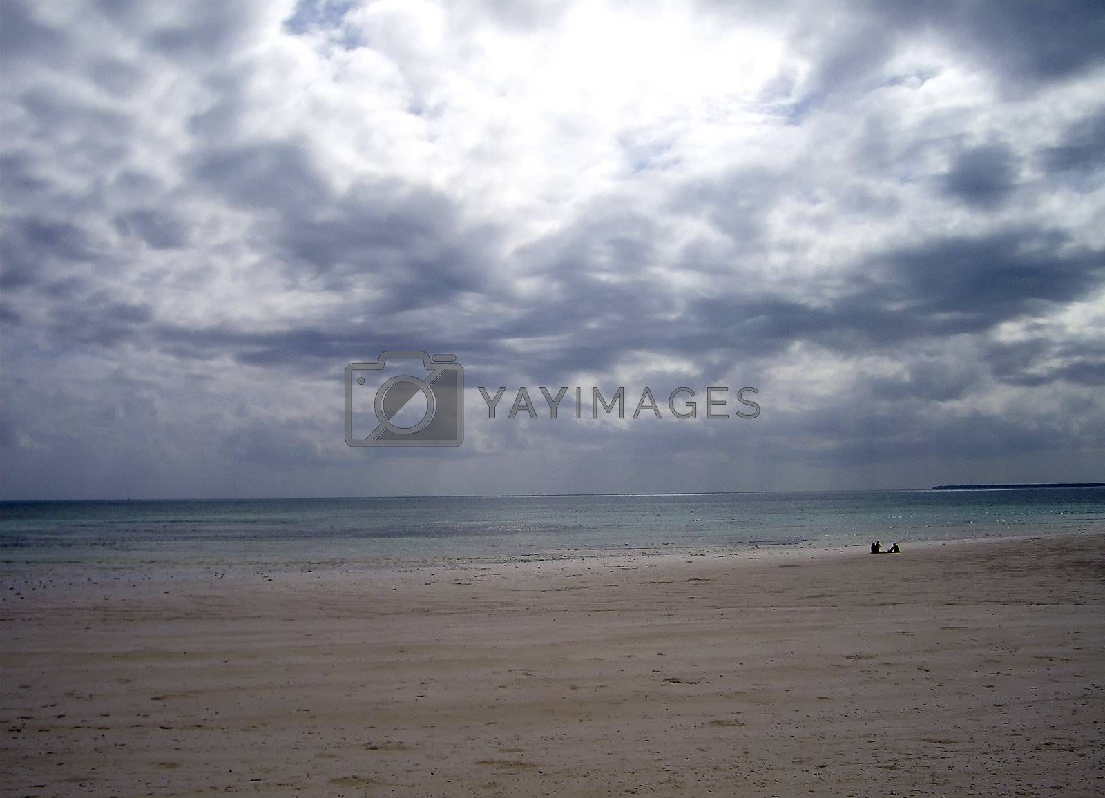 overview of a beach at low tide of Zanzibar