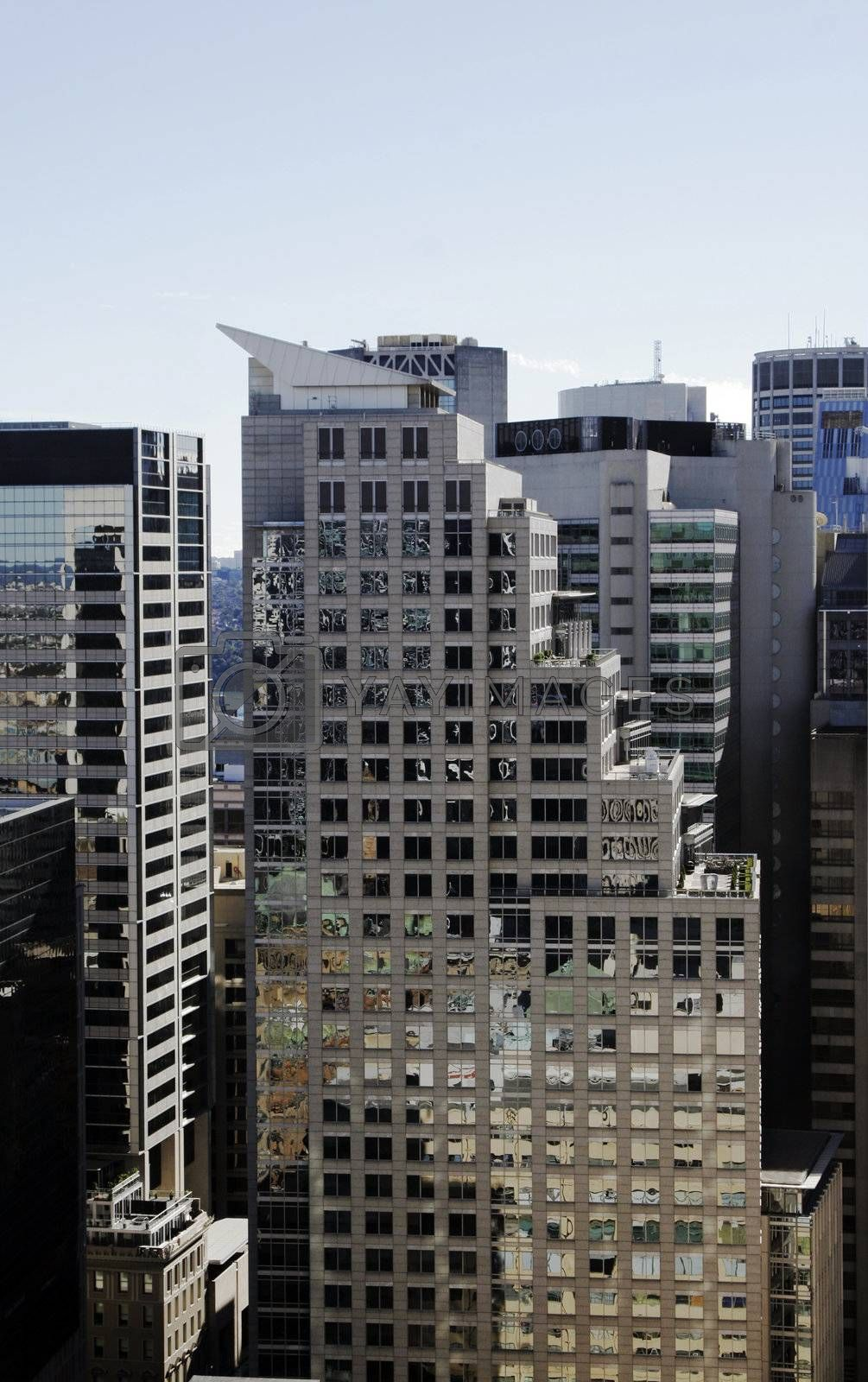 Tall Modern Urban Office Building In Sydney, Concrete And Glass Facade, Australia