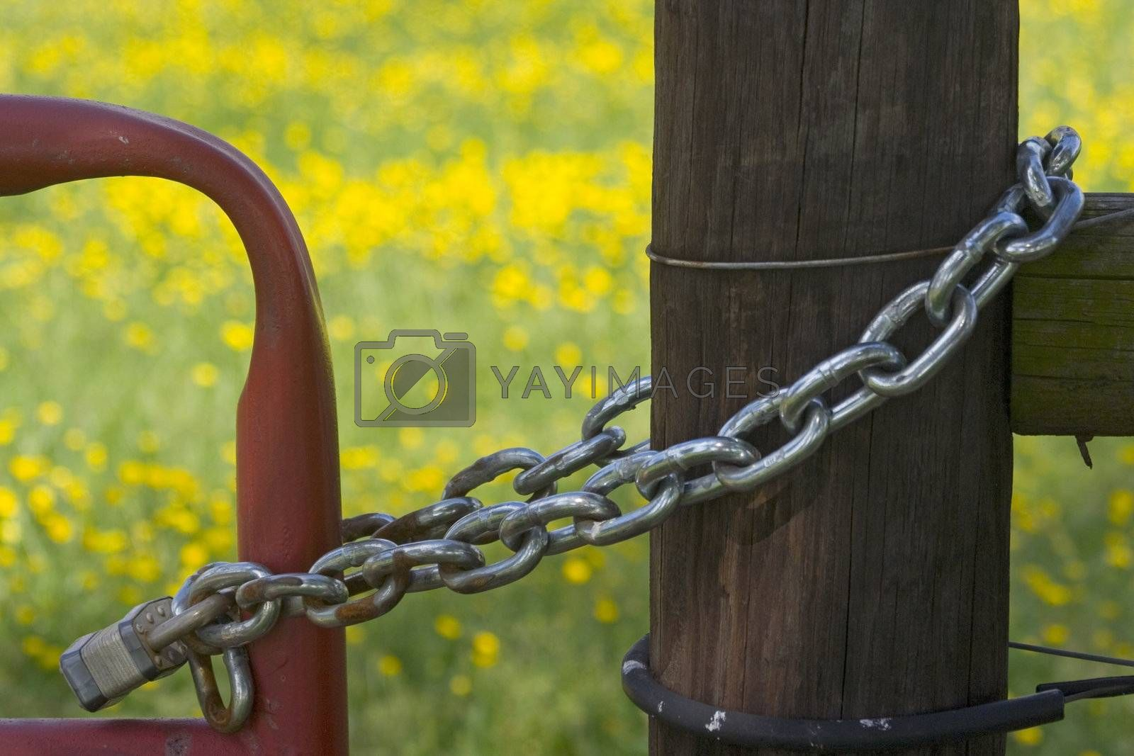A gate locked up to a fence post with a padlock and chain.