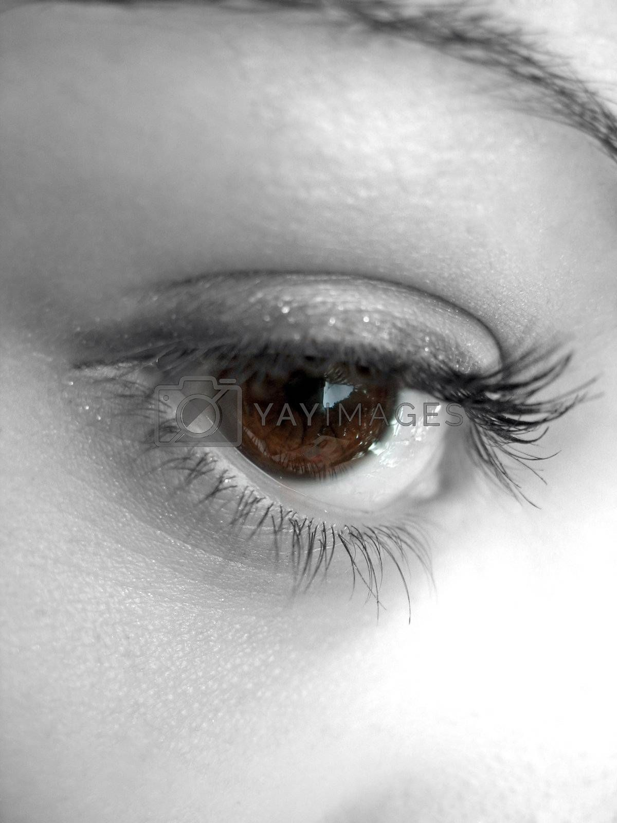 A macro shot of a pretty womans eye with selective color.