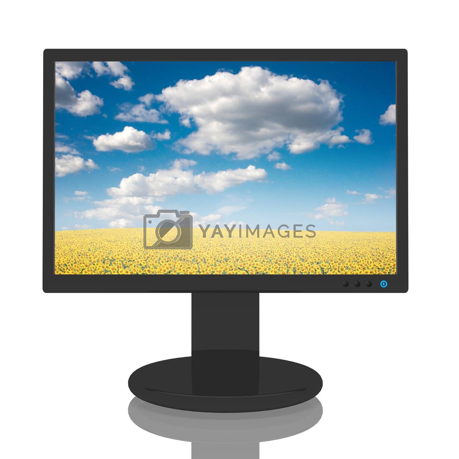Computer monitor with a beautiful image of a field of sunflowers.
