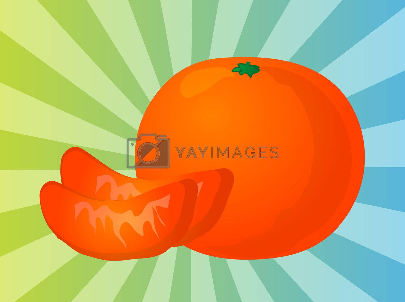 Orange fruit, whole and individual segments, illustration