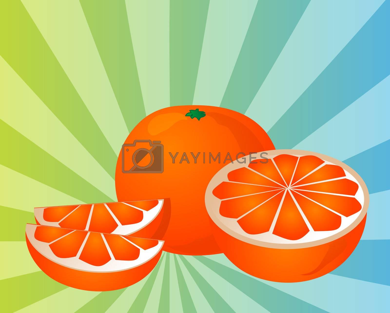 Orange sections illustration by kgtoh
