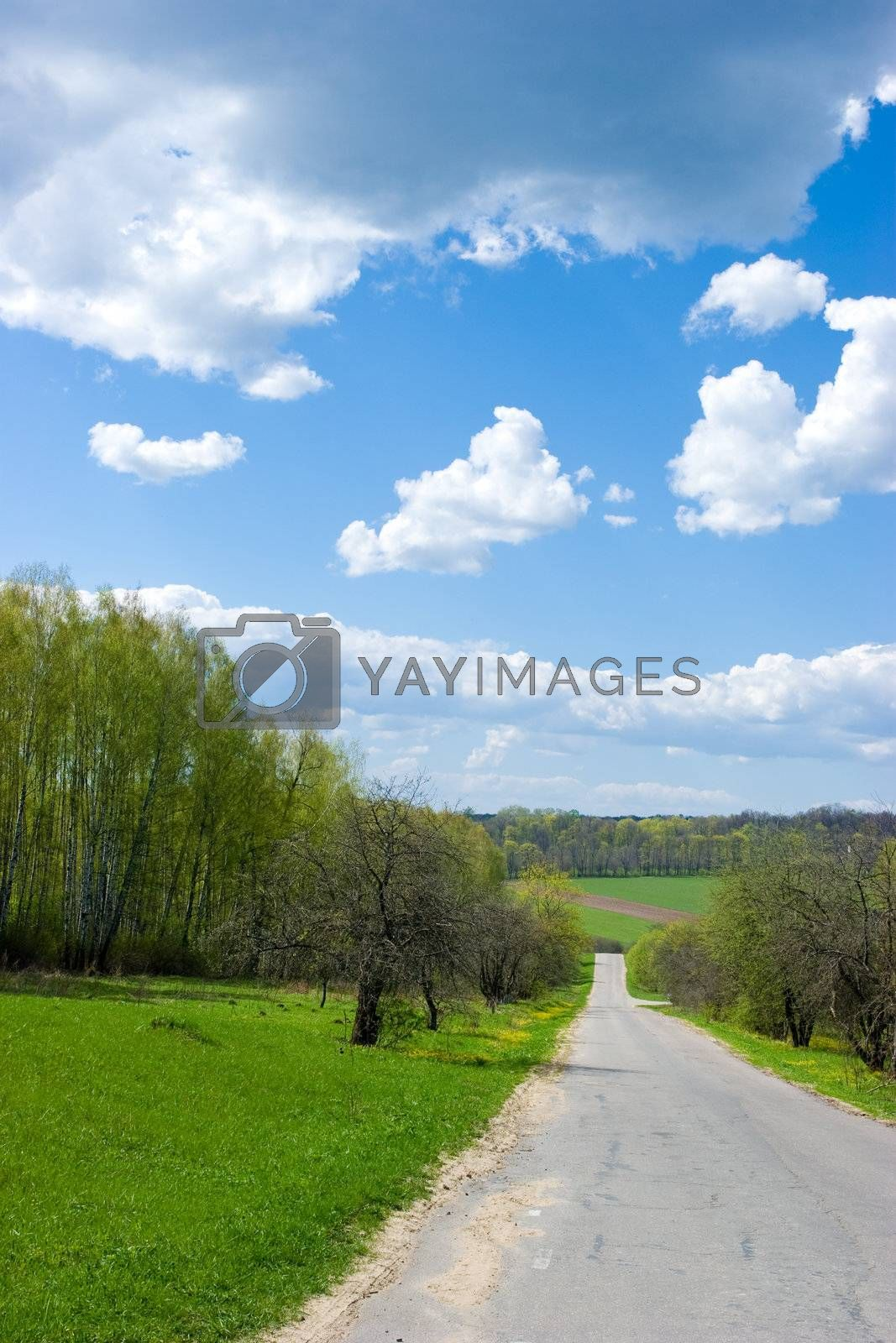 Spring landscape by naumoid