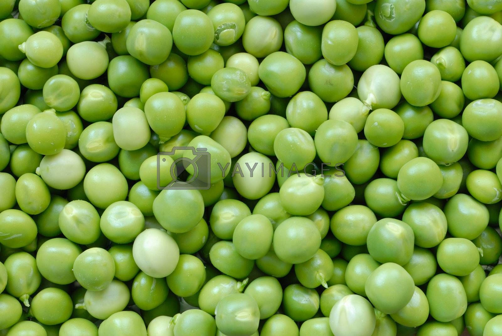 Green peas macro, can be used as a background