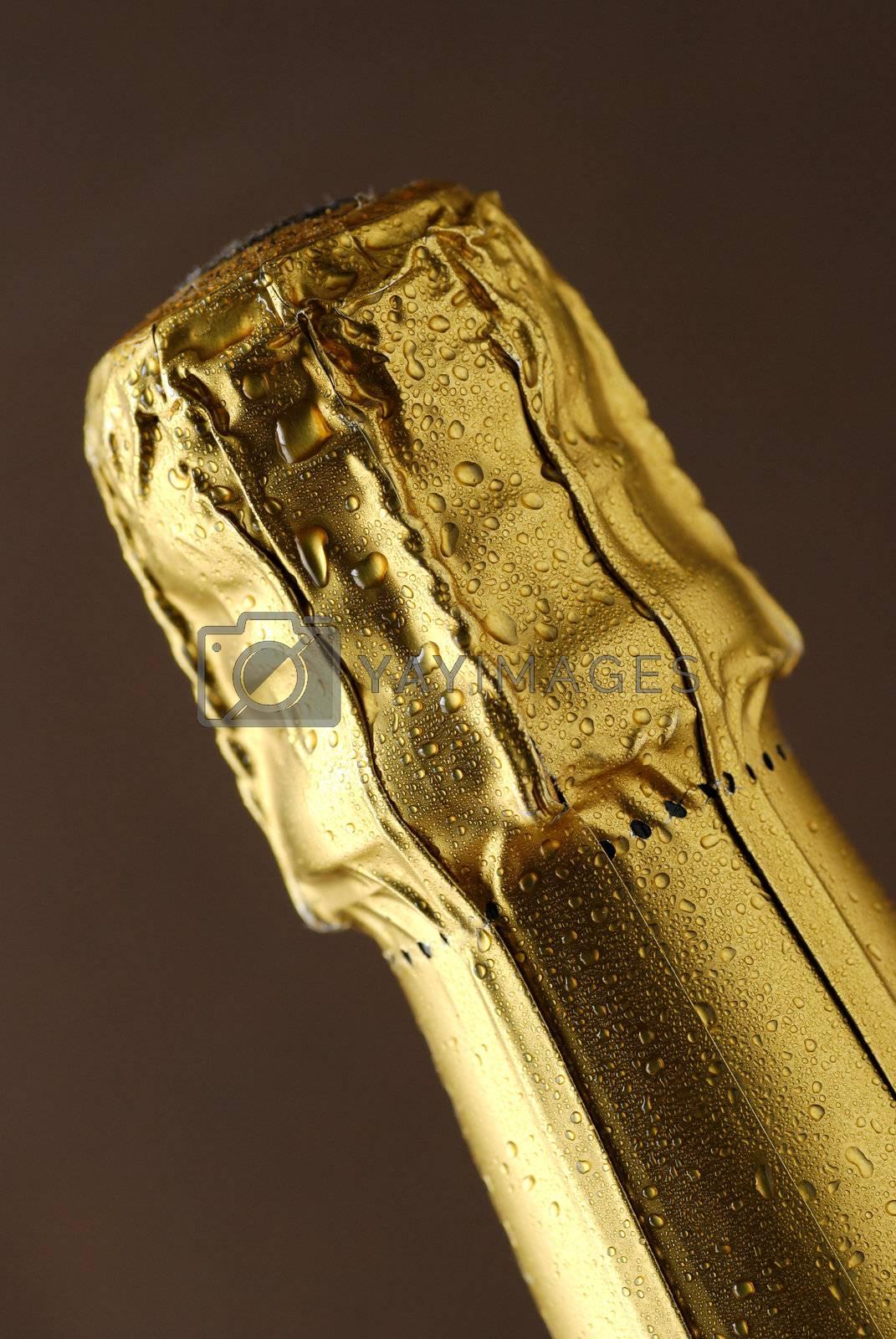 champagne foil top by massman