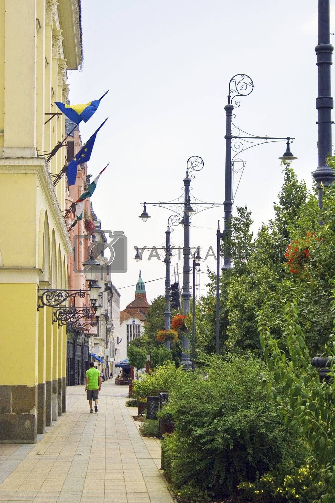 Street of Debrecen city, Hungary at summer time.