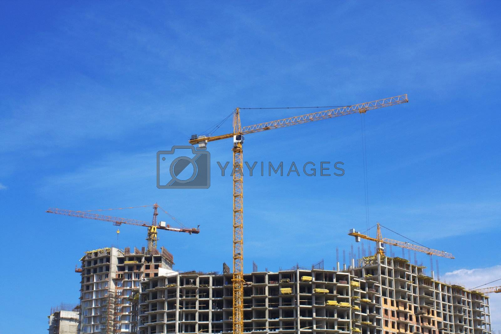 Cranes on sandy I protect under the blue sky. Construction of a complex of buildings
