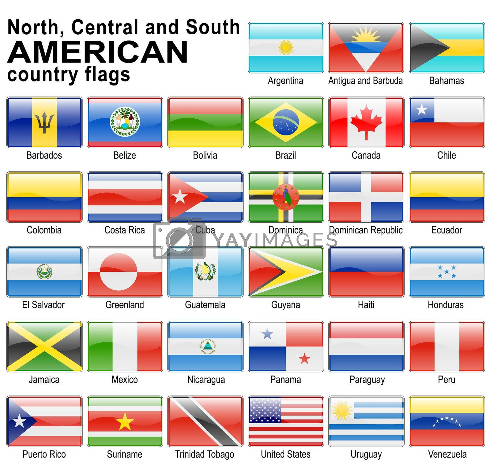 shiny web buttons with american country flags