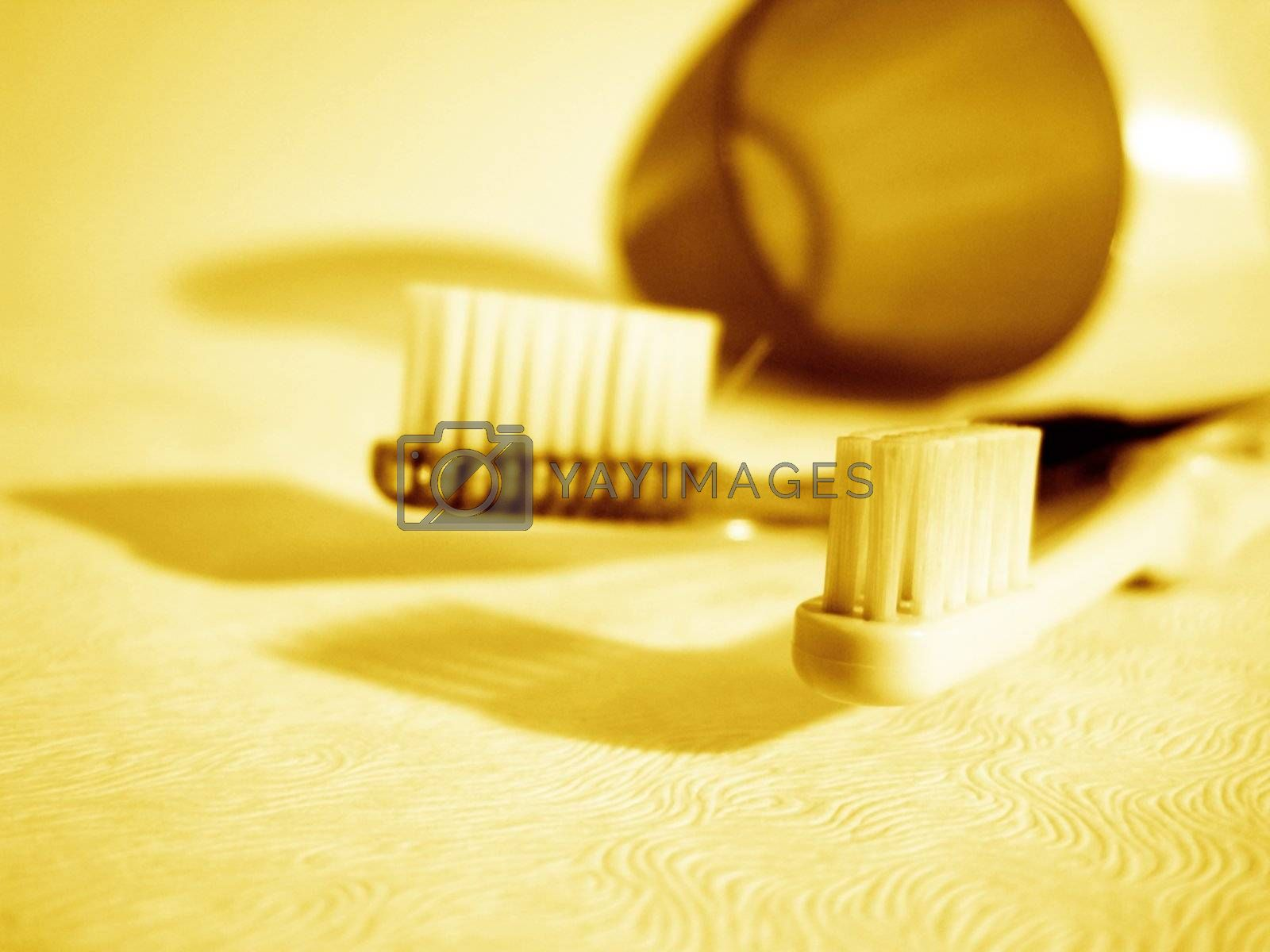 a macro view for two toothbrush
