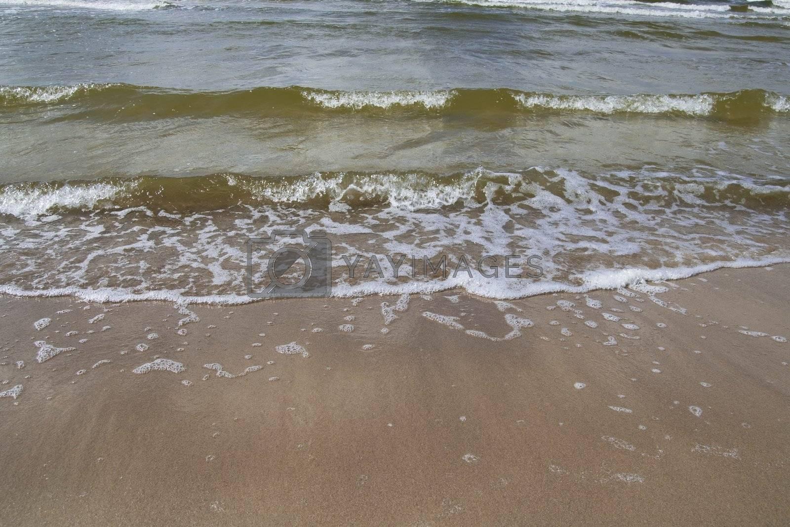 The Baltic sea coast at port