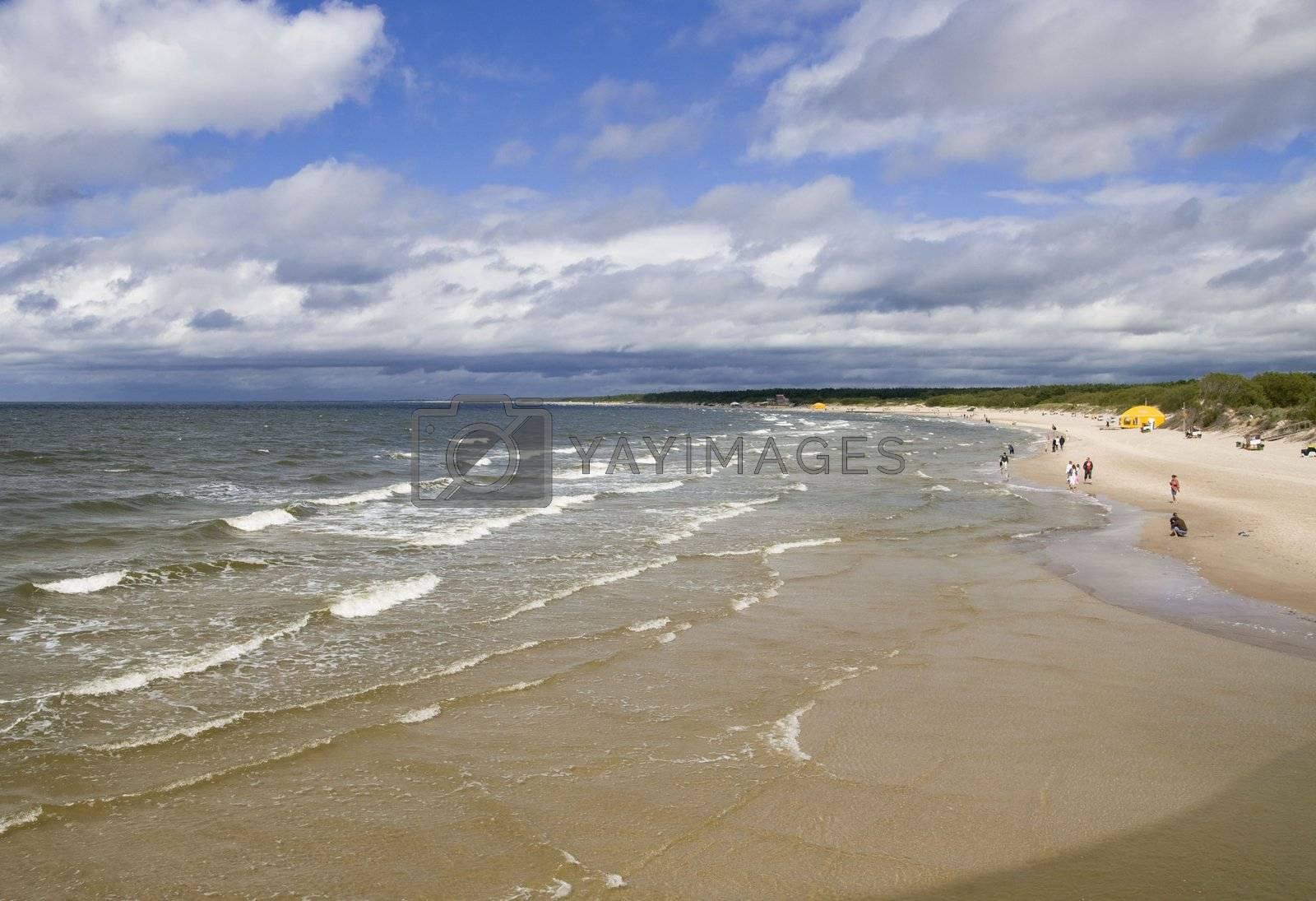 Royalty free image of Coast of the Baltic Sea by Nikonas