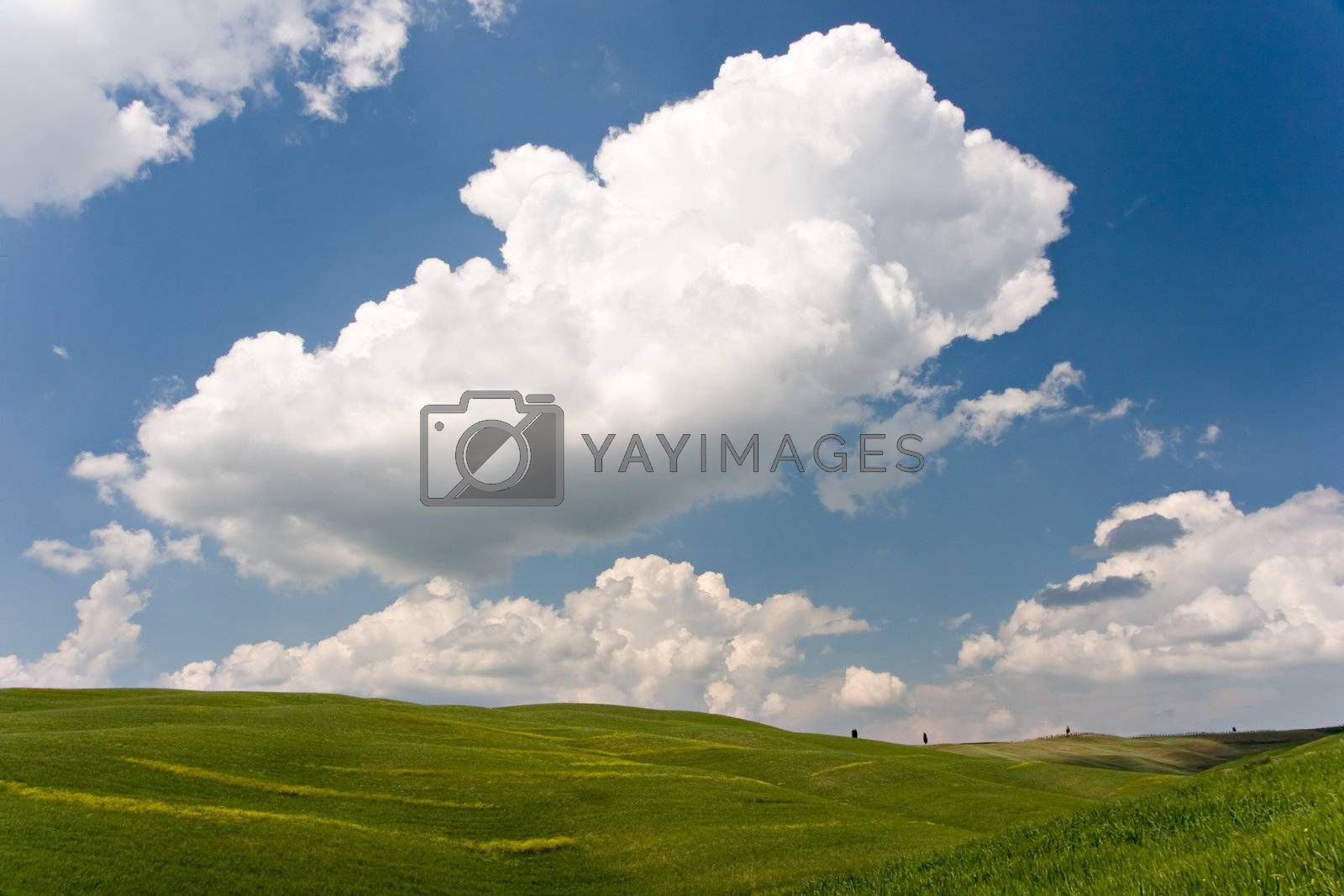 Landscape : Green field, blue sky and big white fluffy clouds. Tuscany, Italy