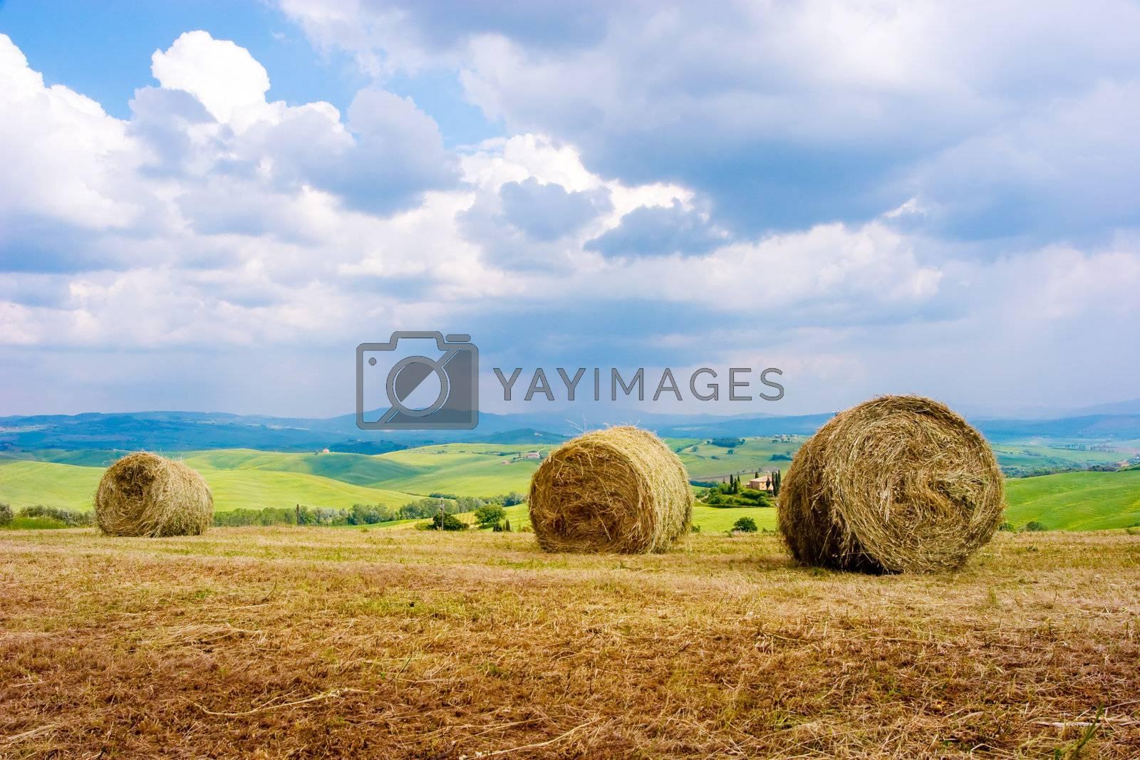 Hay Bales by ajn