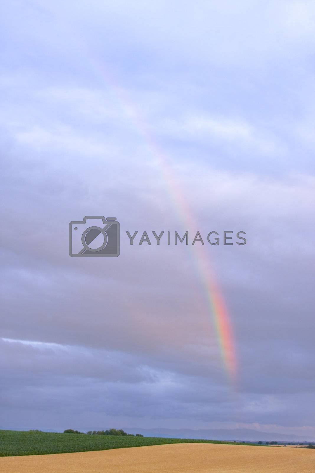 Colourful rainbow in a cloudy sky