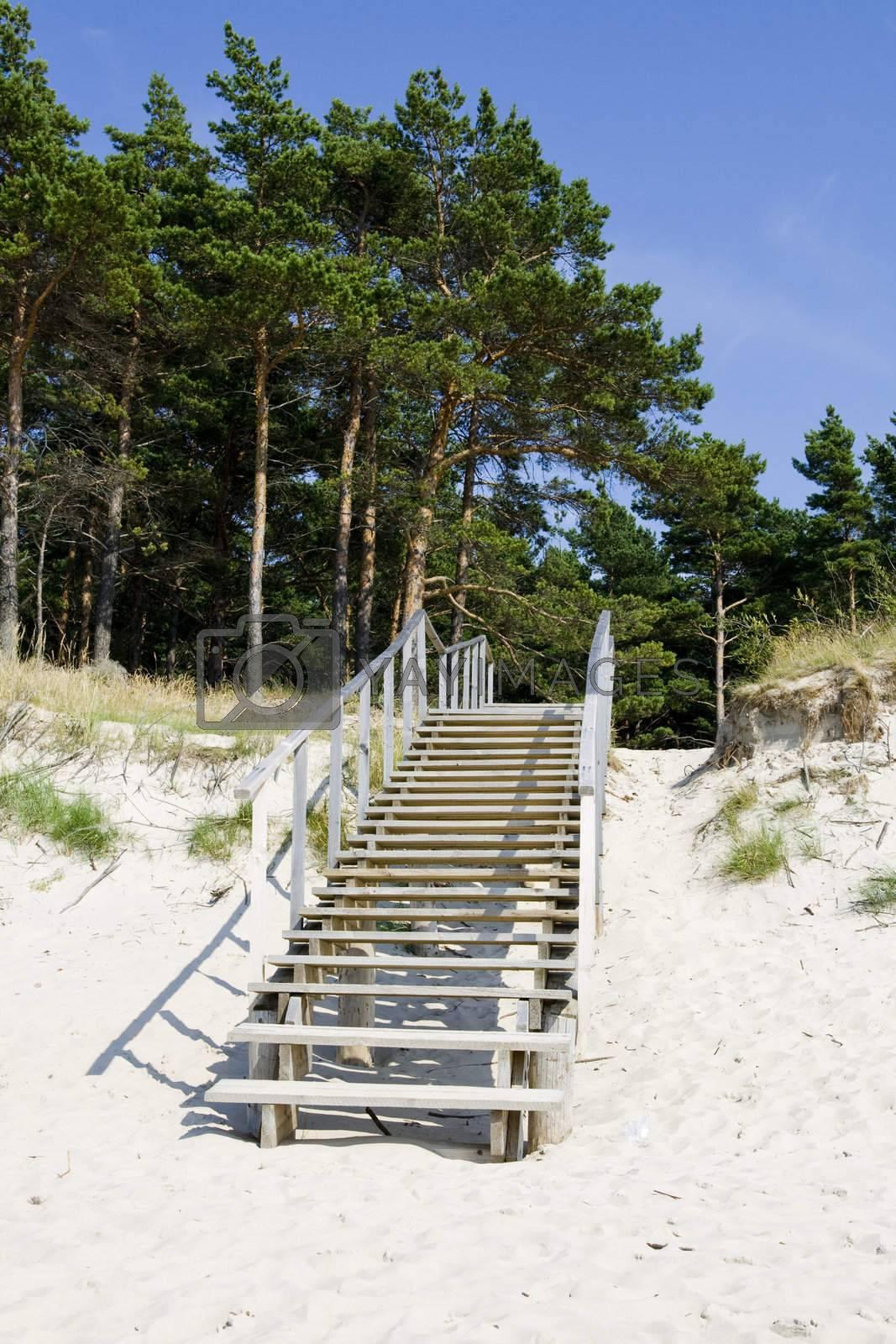 Stairway in the beach in summer