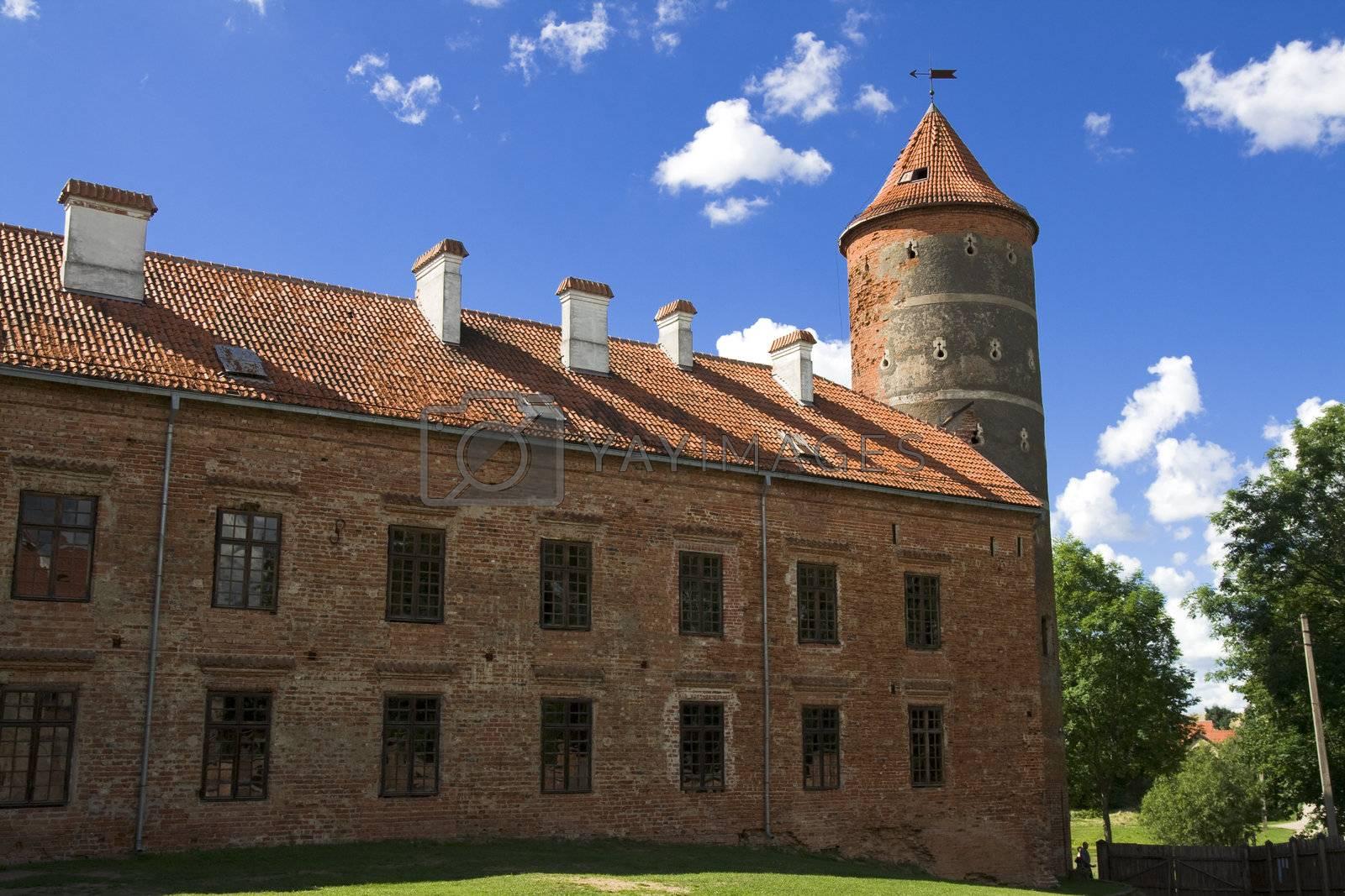 Royalty free image of Castle Panemune by Nikonas
