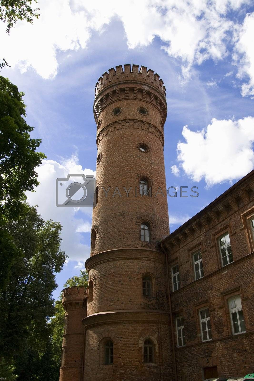 Royalty free image of Castle Raudone by Nikonas