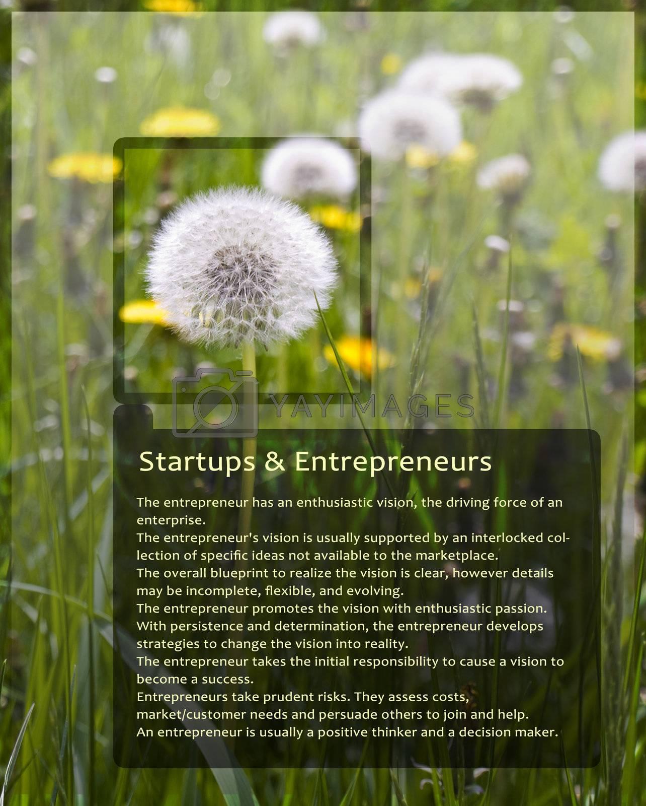 Sample Information Sheet for Entrepreneurs With Dandelion Black Trim