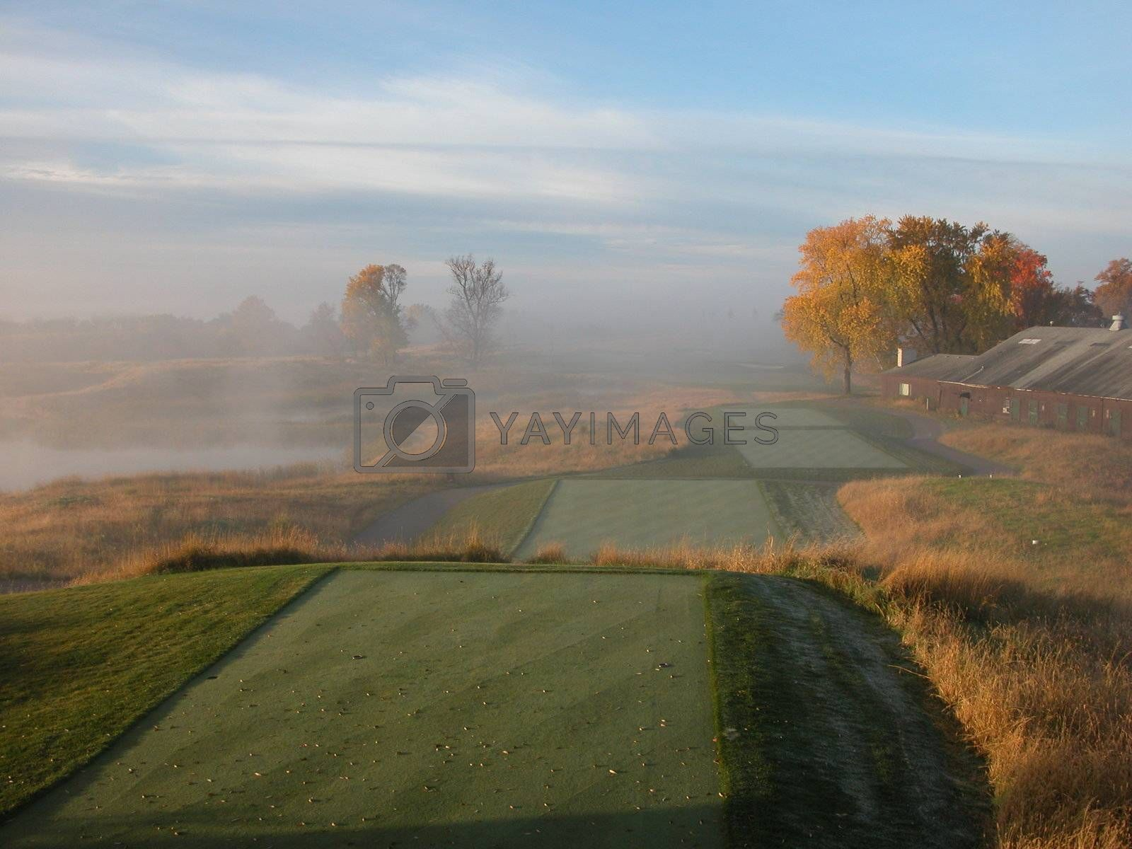 Royalty free image of The Perfect Tee Boxes by ewilliamsdesign