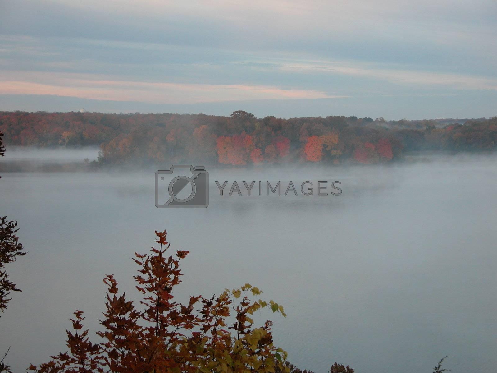 Island on a steamy lake