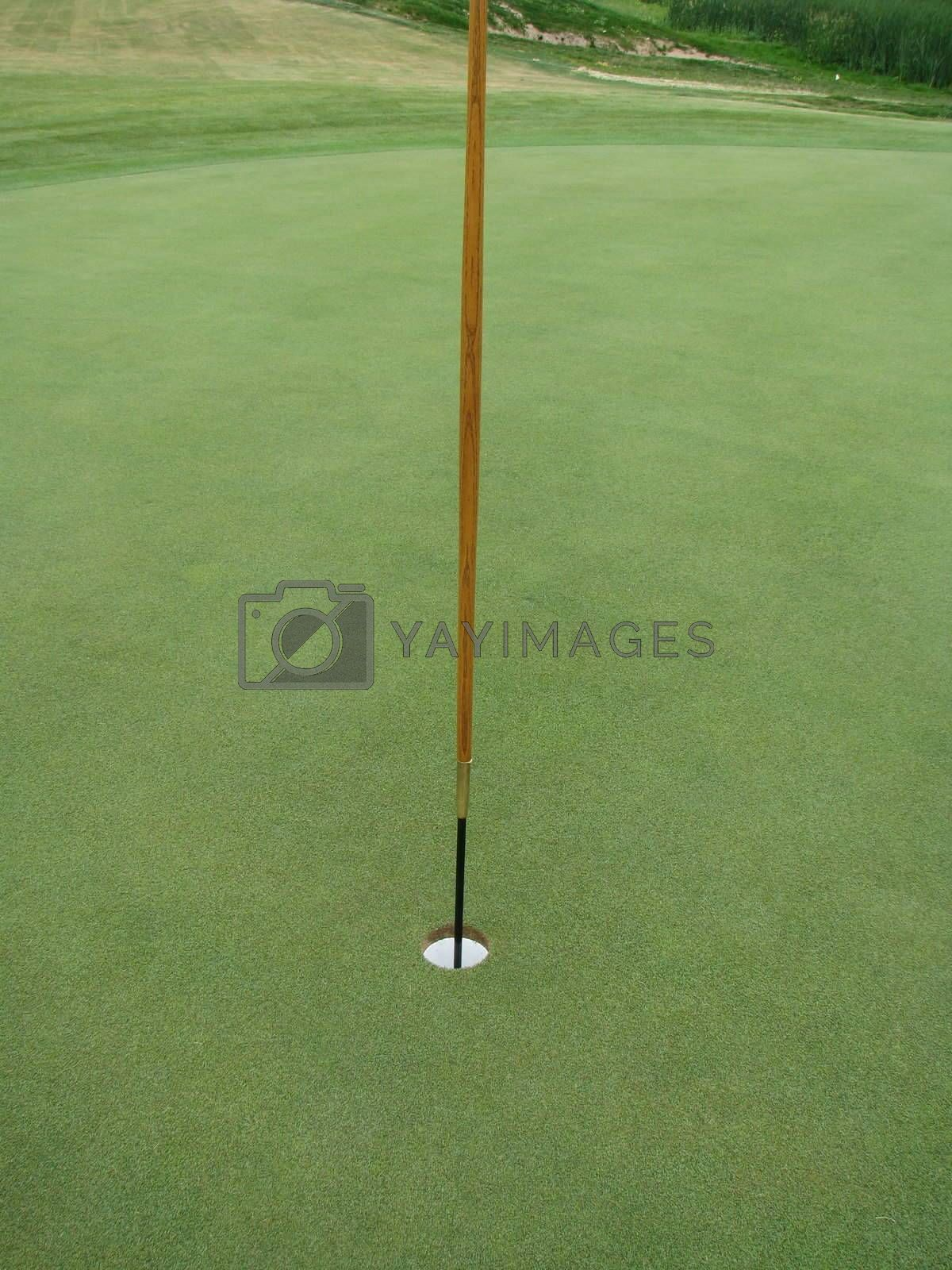 Perfect new green with wooden flagstick