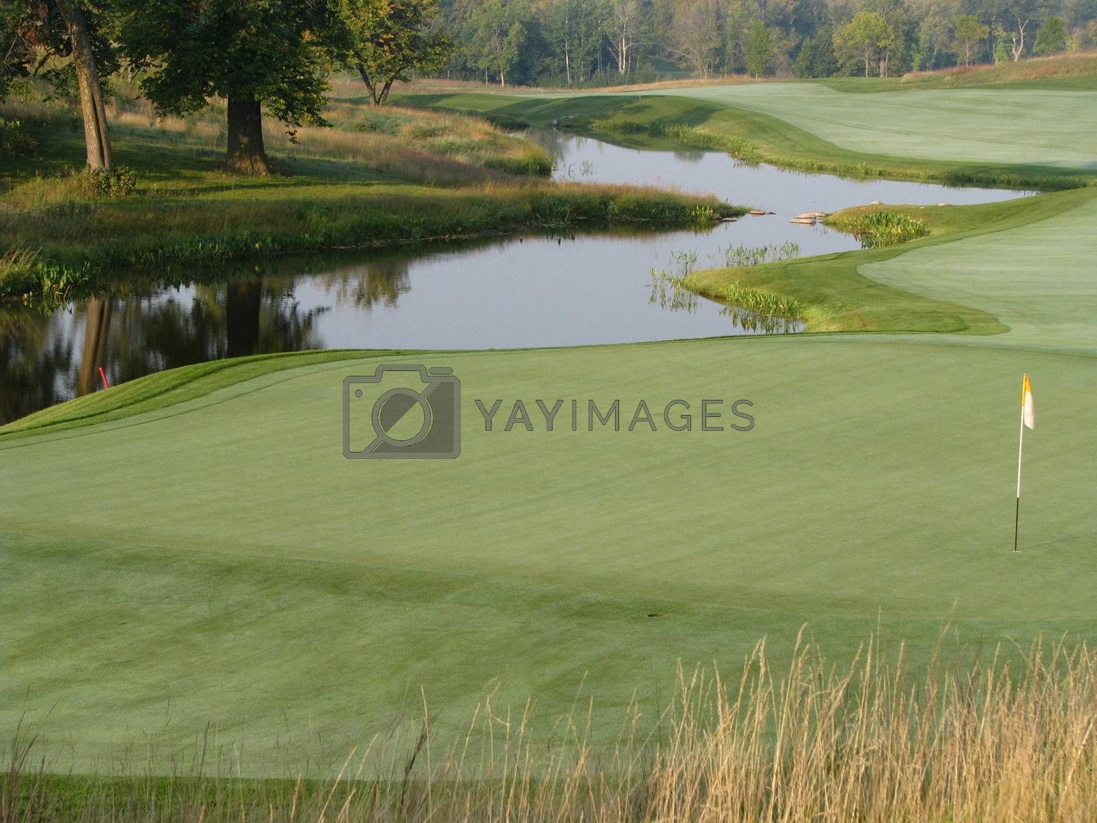 Royalty free image of Golf Green - 18 Holes by ewilliamsdesign