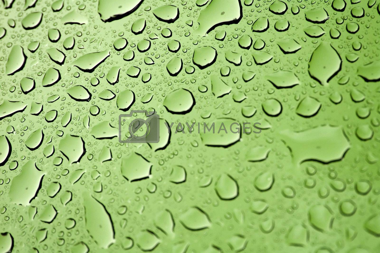 Water Droplets by graficallyminded