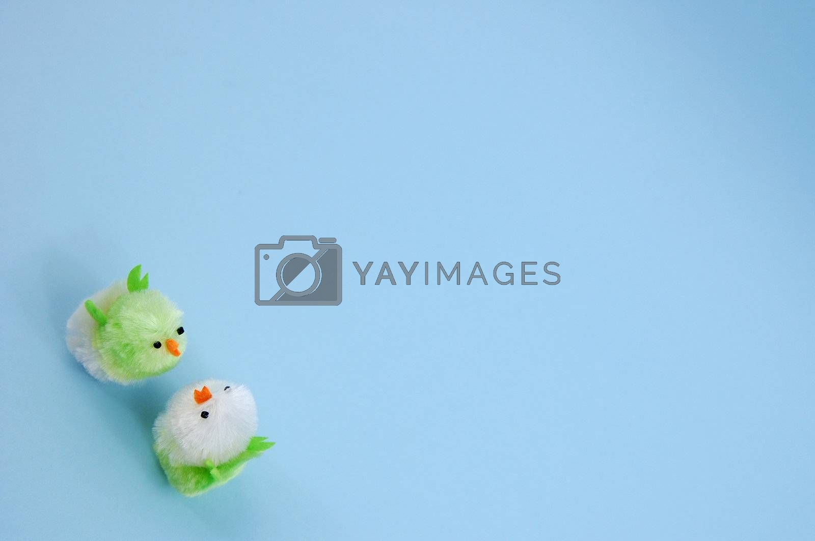 two easter chicks on blue background by maggiemolloy
