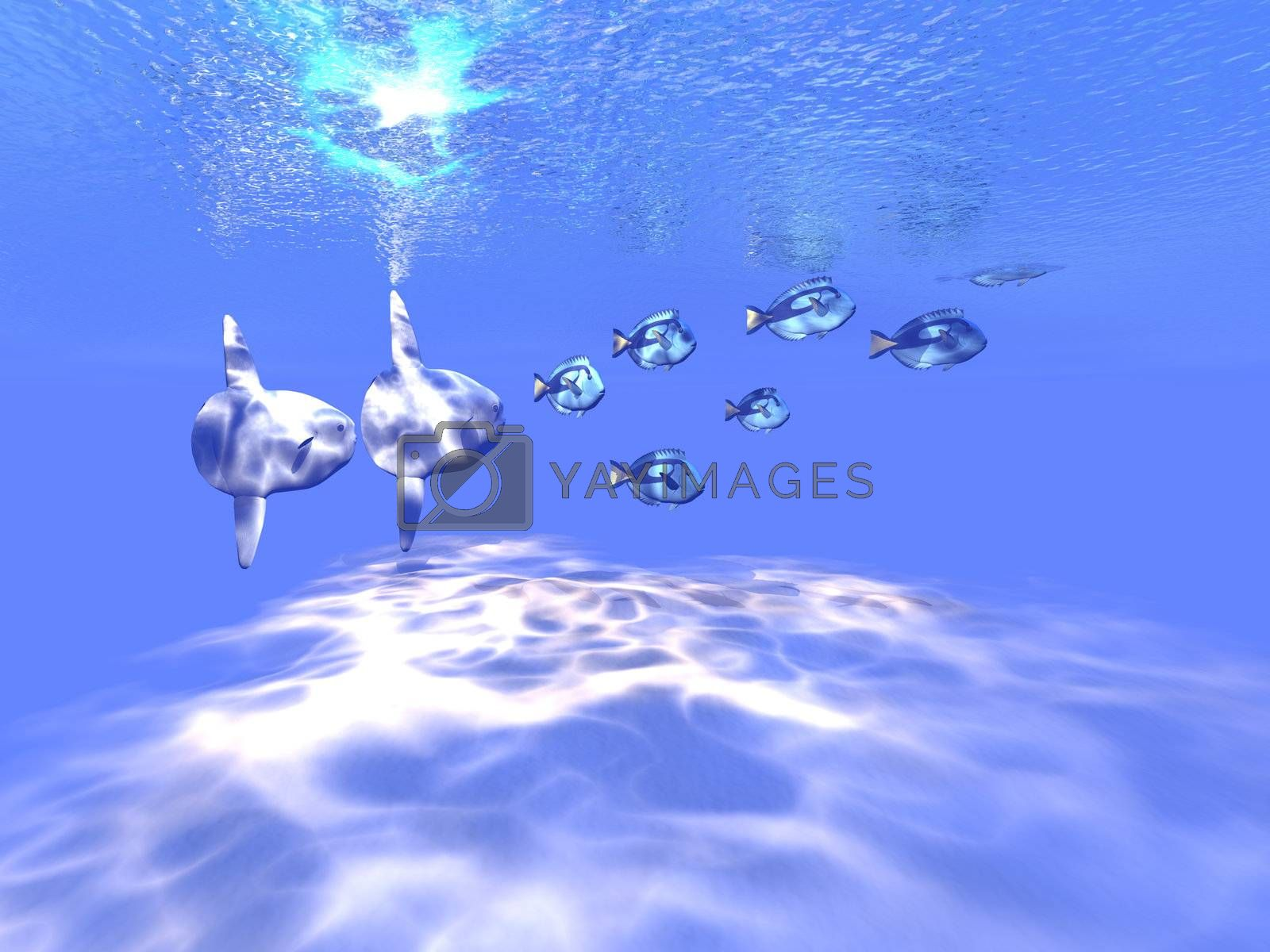 Royalty free image of BLUE TANGO by Catmando
