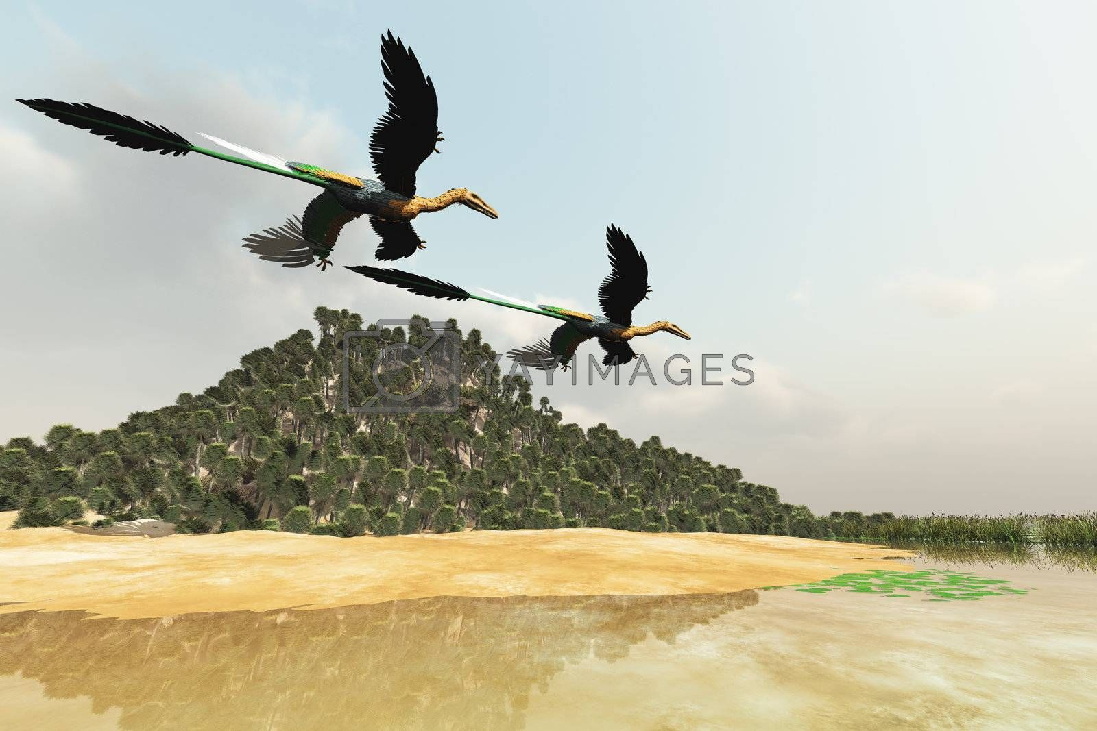 Two Microraptor dinosaurs fly over a wetland marsh in prehistoric times.