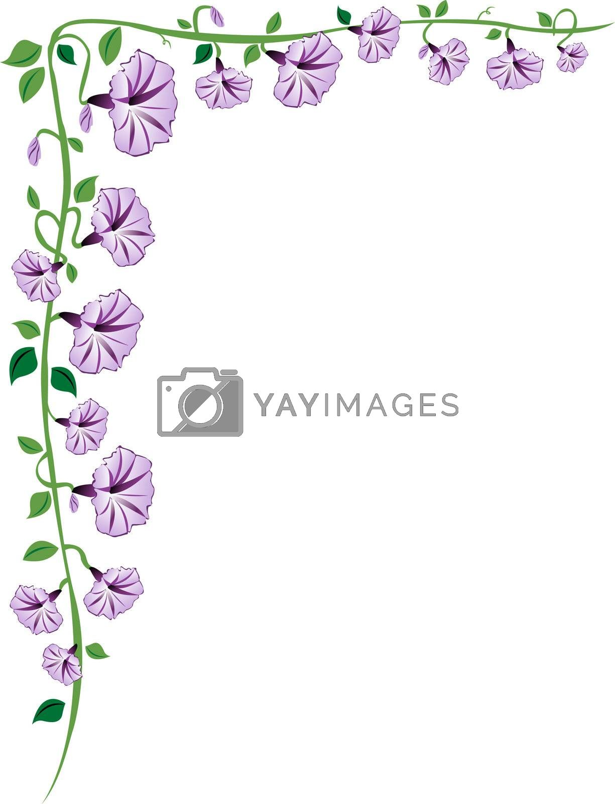 A morning glory vine border with purple flowers, leaves and buds.