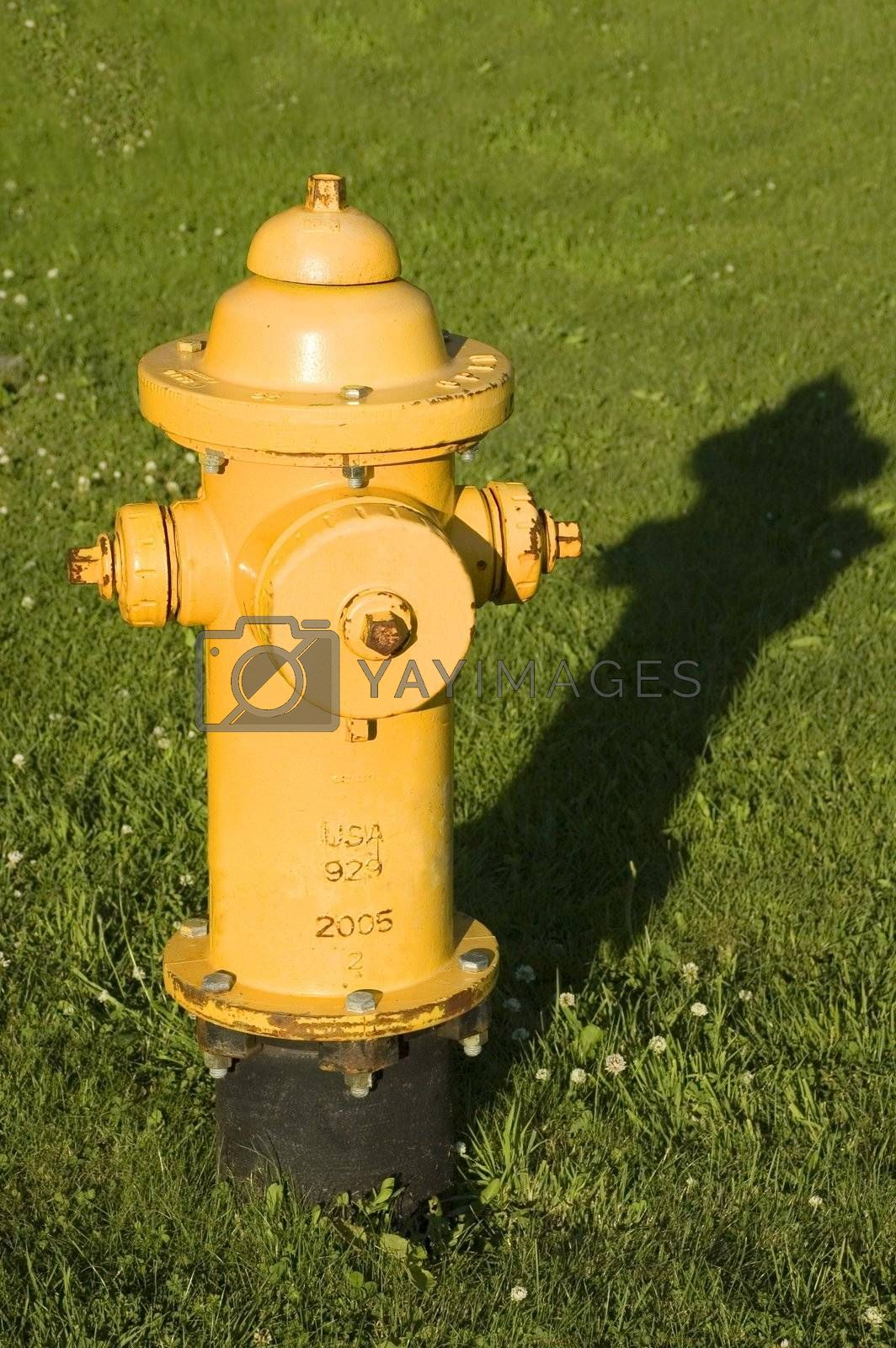 A yellow fire hydrant in the grass with a long shadow in the afternoon.