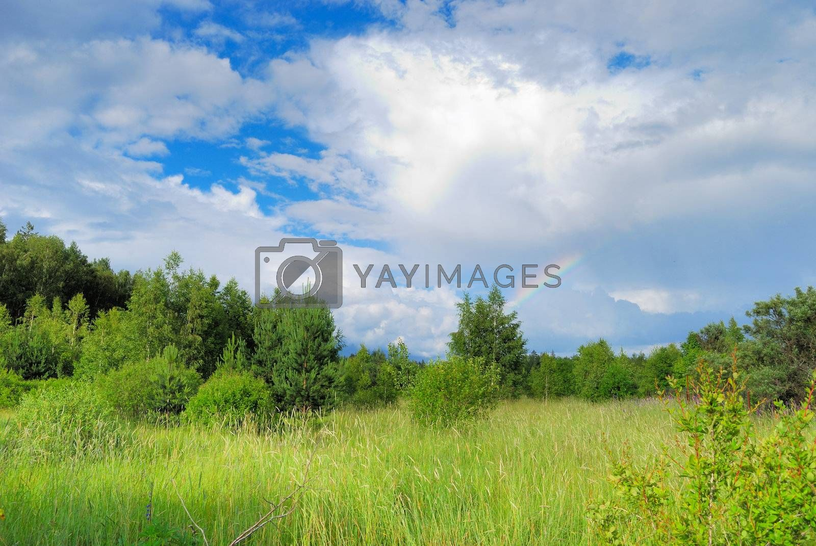 Part of rainbow among white clouds over green summer forest