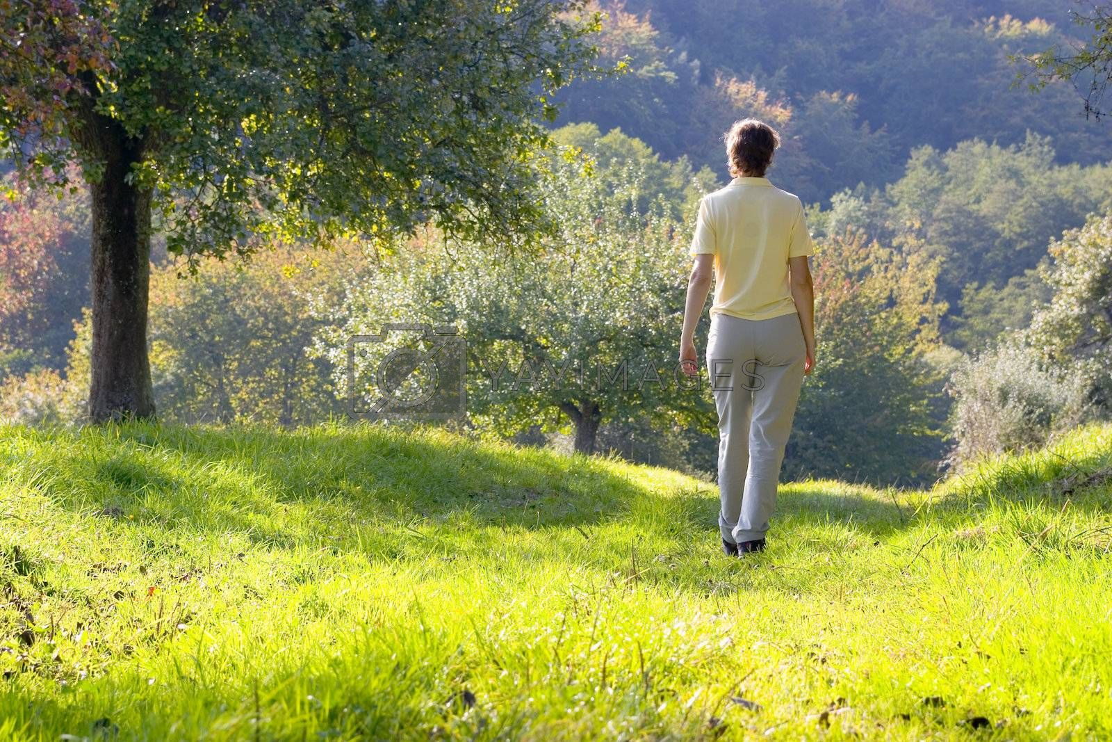 Woman walking in a autumn landscape on a sunny evening