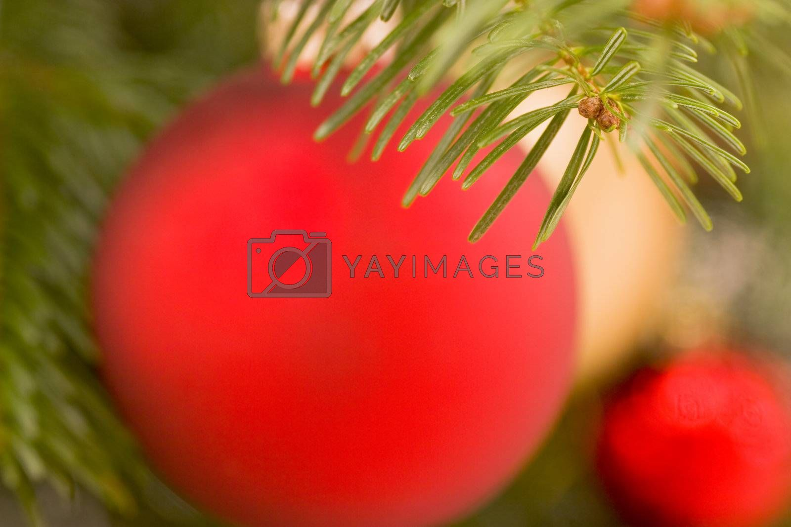 Blurred christmas tree decorations background. Focus on the fir needles in the foreground