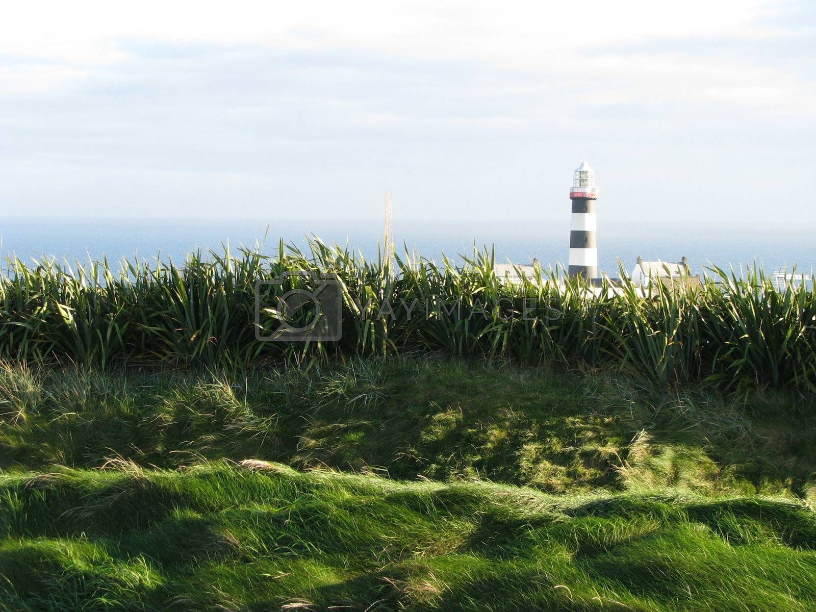 Royalty free image of LightHouse by ewilliamsdesign