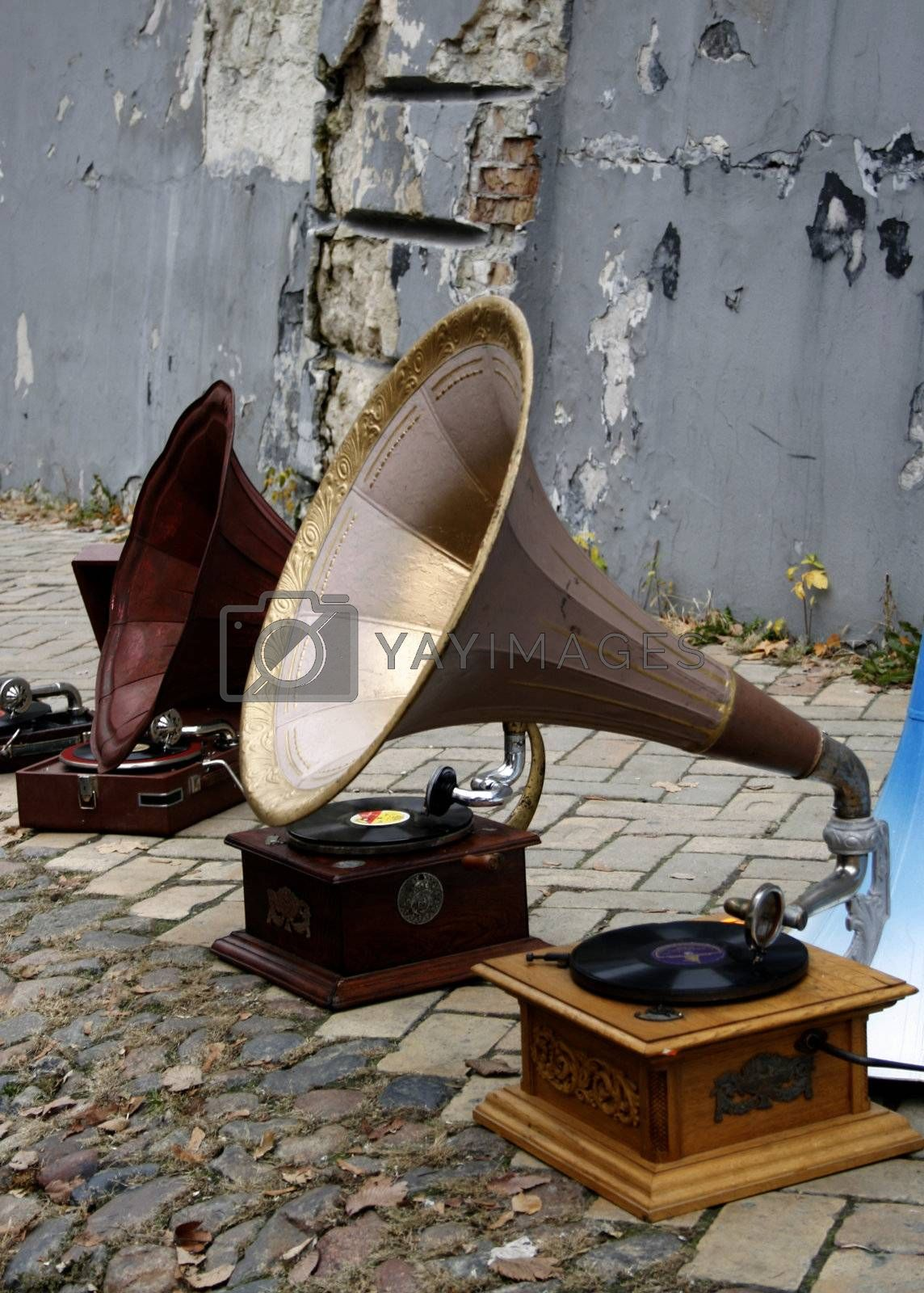 old  gramophones