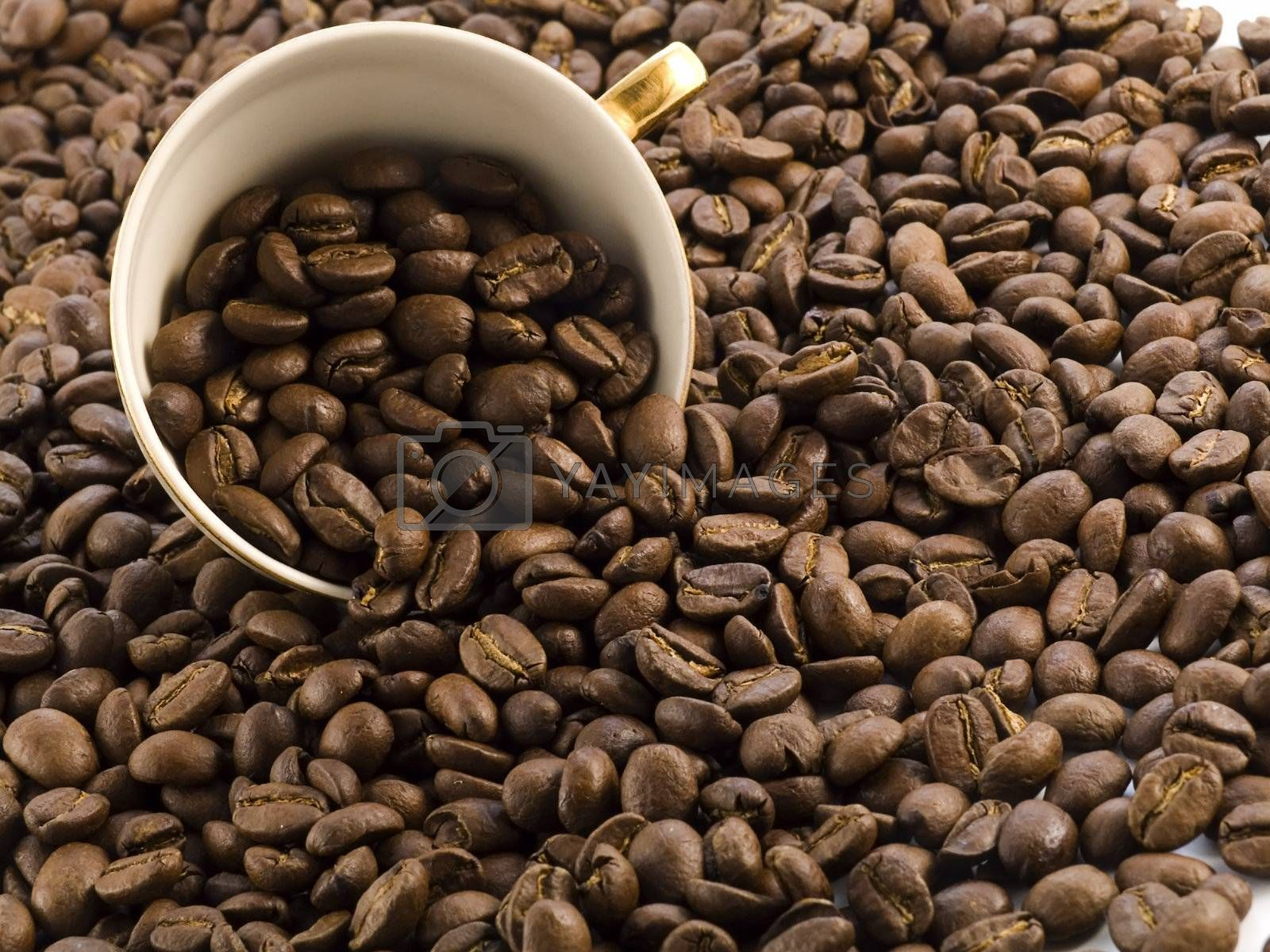 coffee cup full of coffee beans on dark background