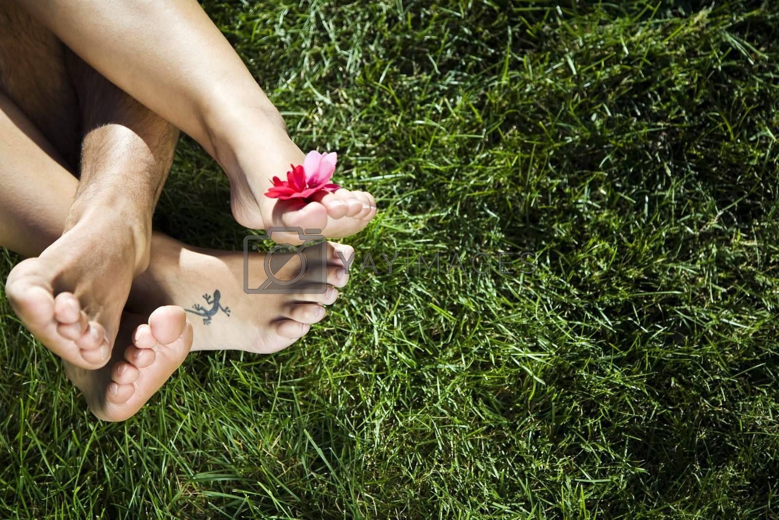 young couple laying down on the grass