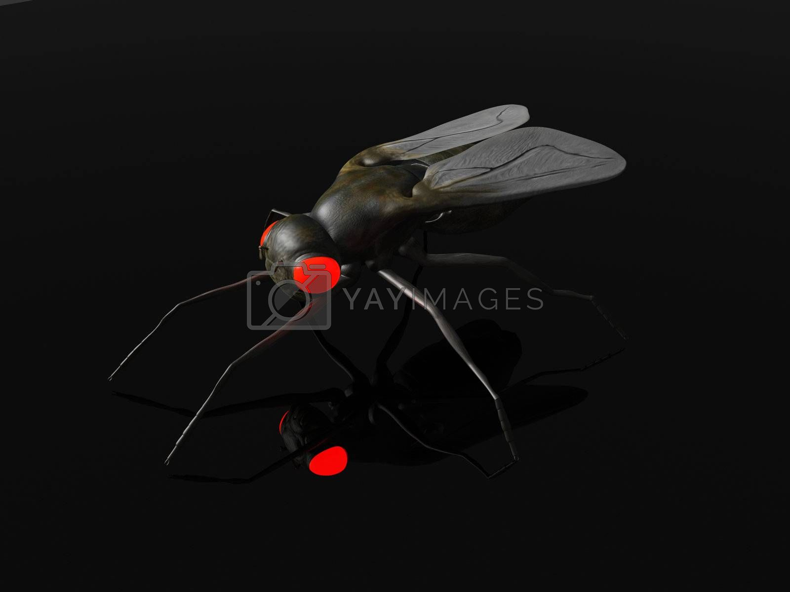 3D rendered Illustration. An evil Fly in the Dark.