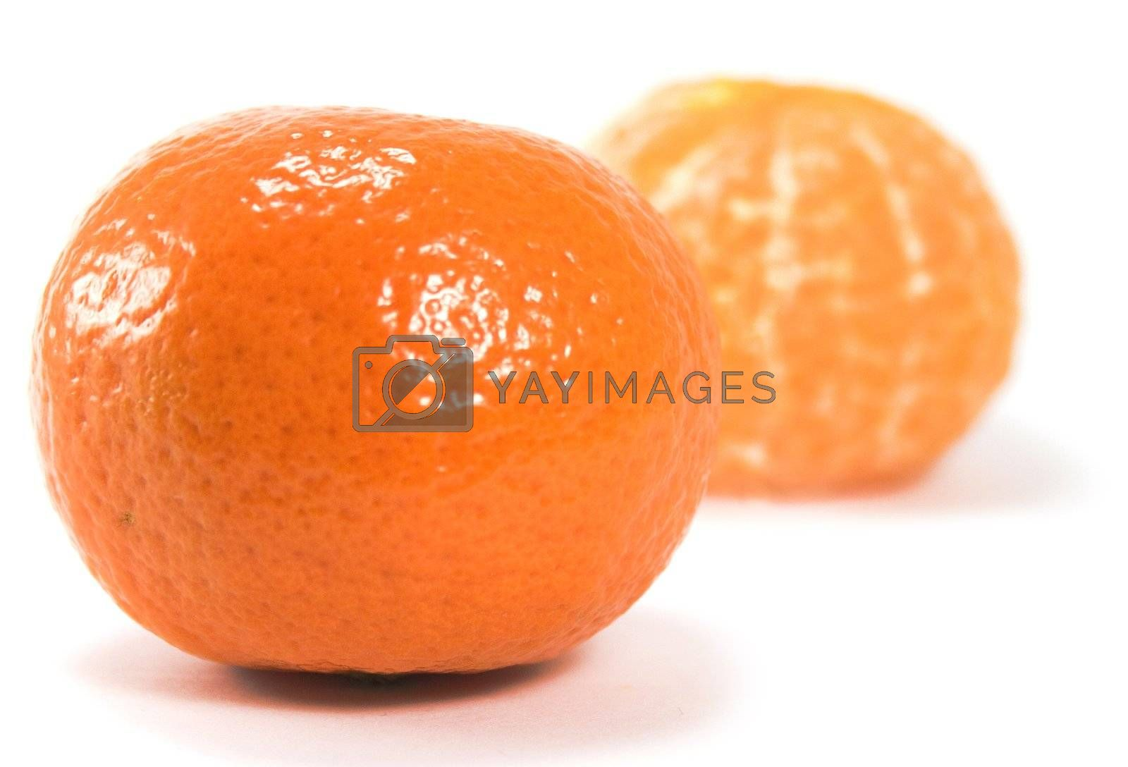 two tangerines over white background