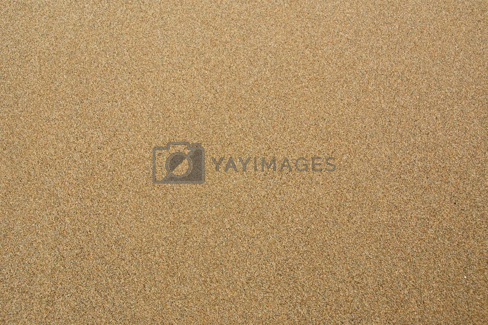 Sand texture or backround