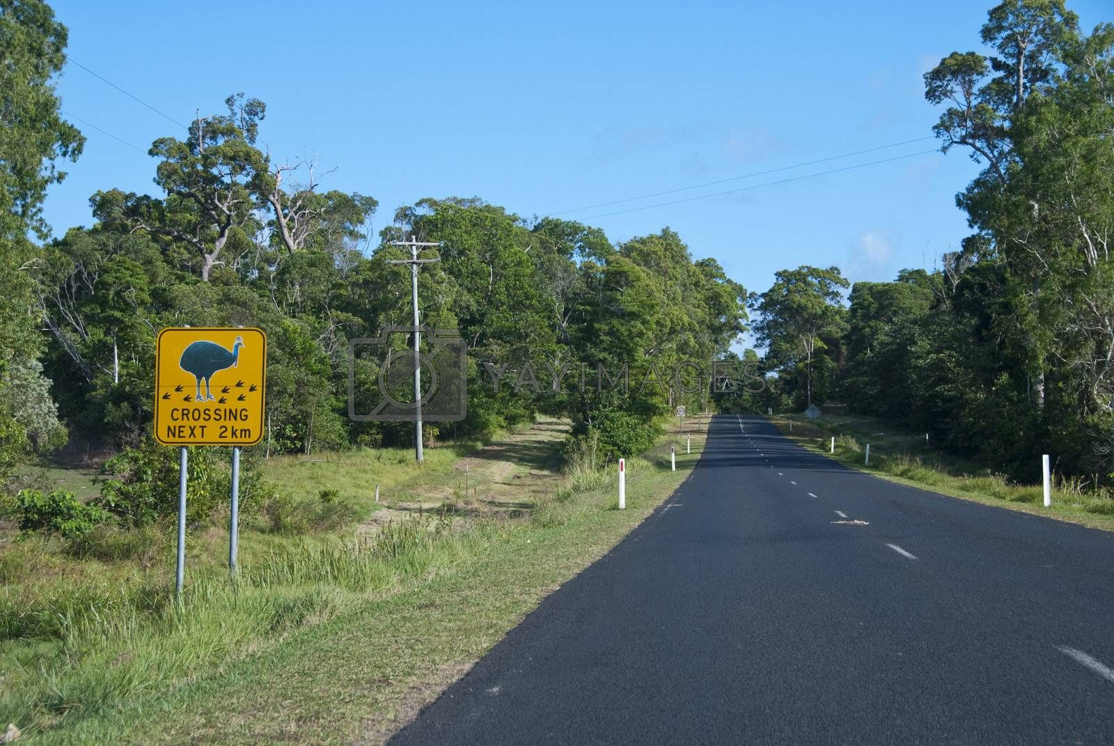 Australian Countryside by jovannig
