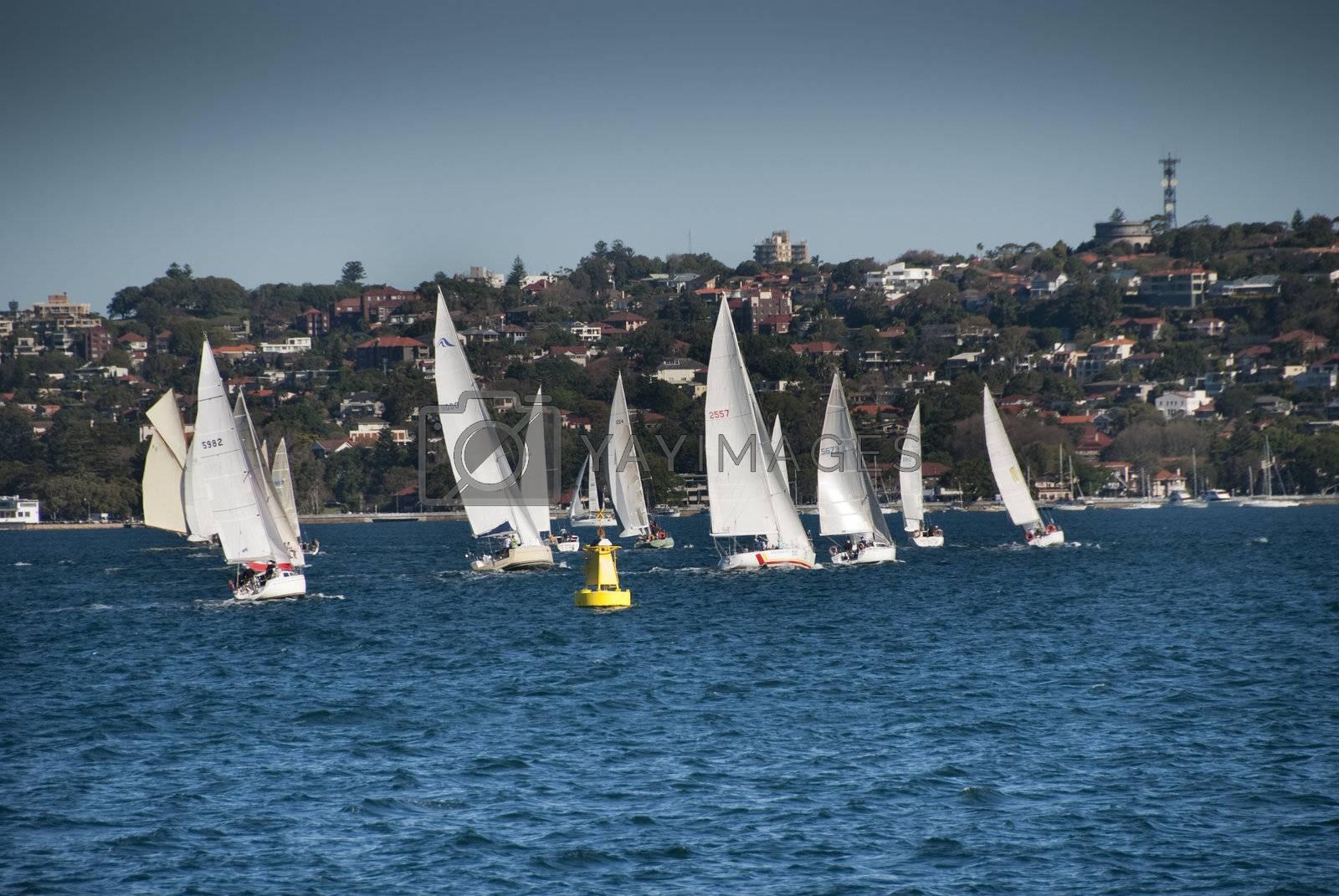 Sydney Bay, August 2009 by jovannig