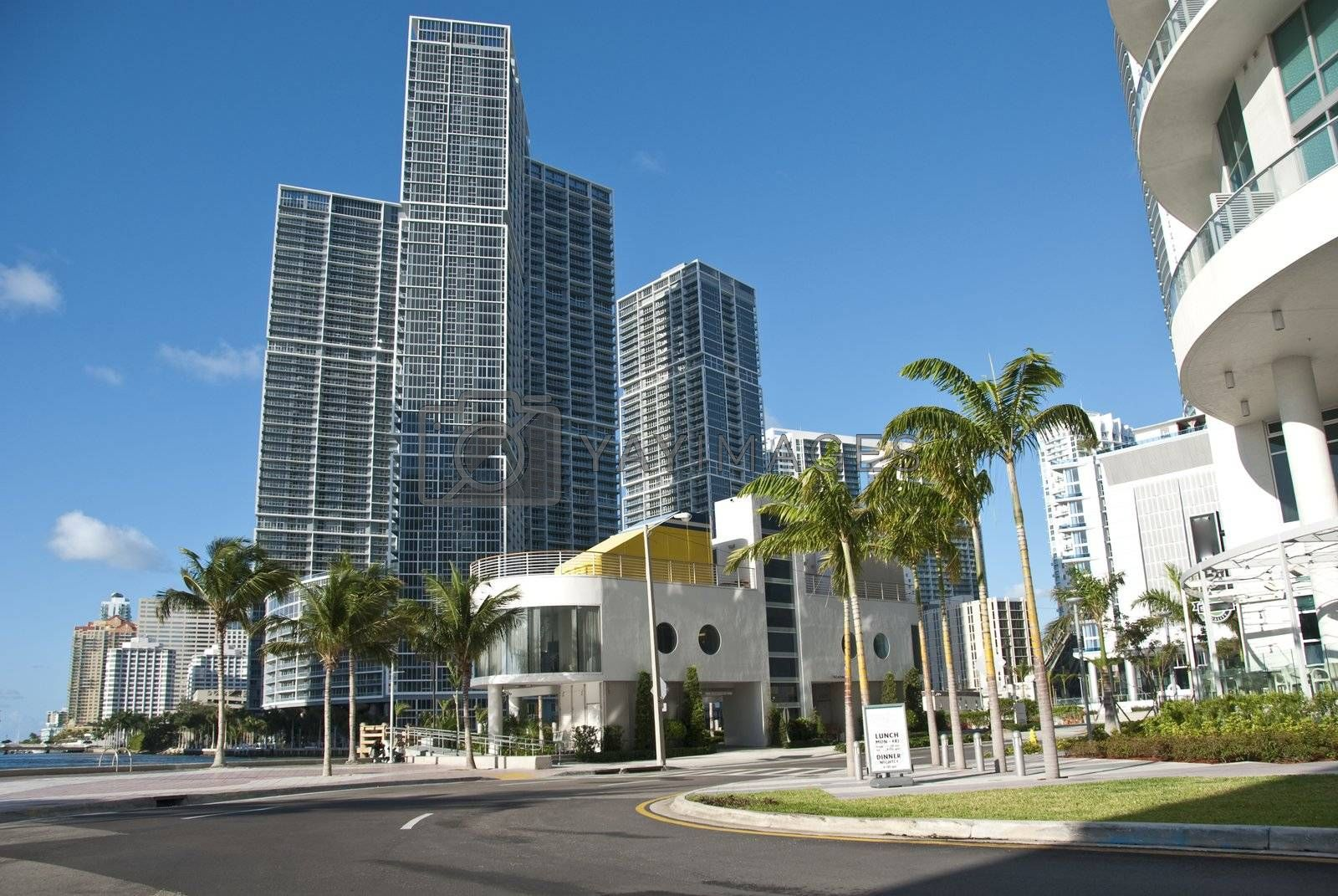 Miami, Florida, on a Hot and Sunny Spring Morning by jovannig