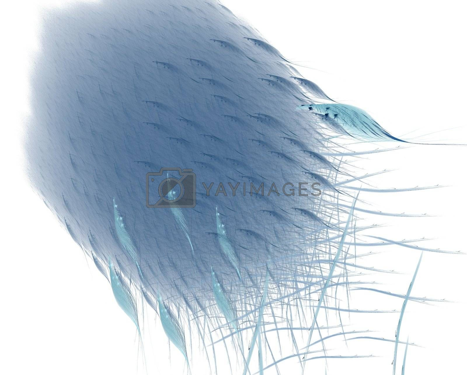 Blue abstract feathers by tomatto