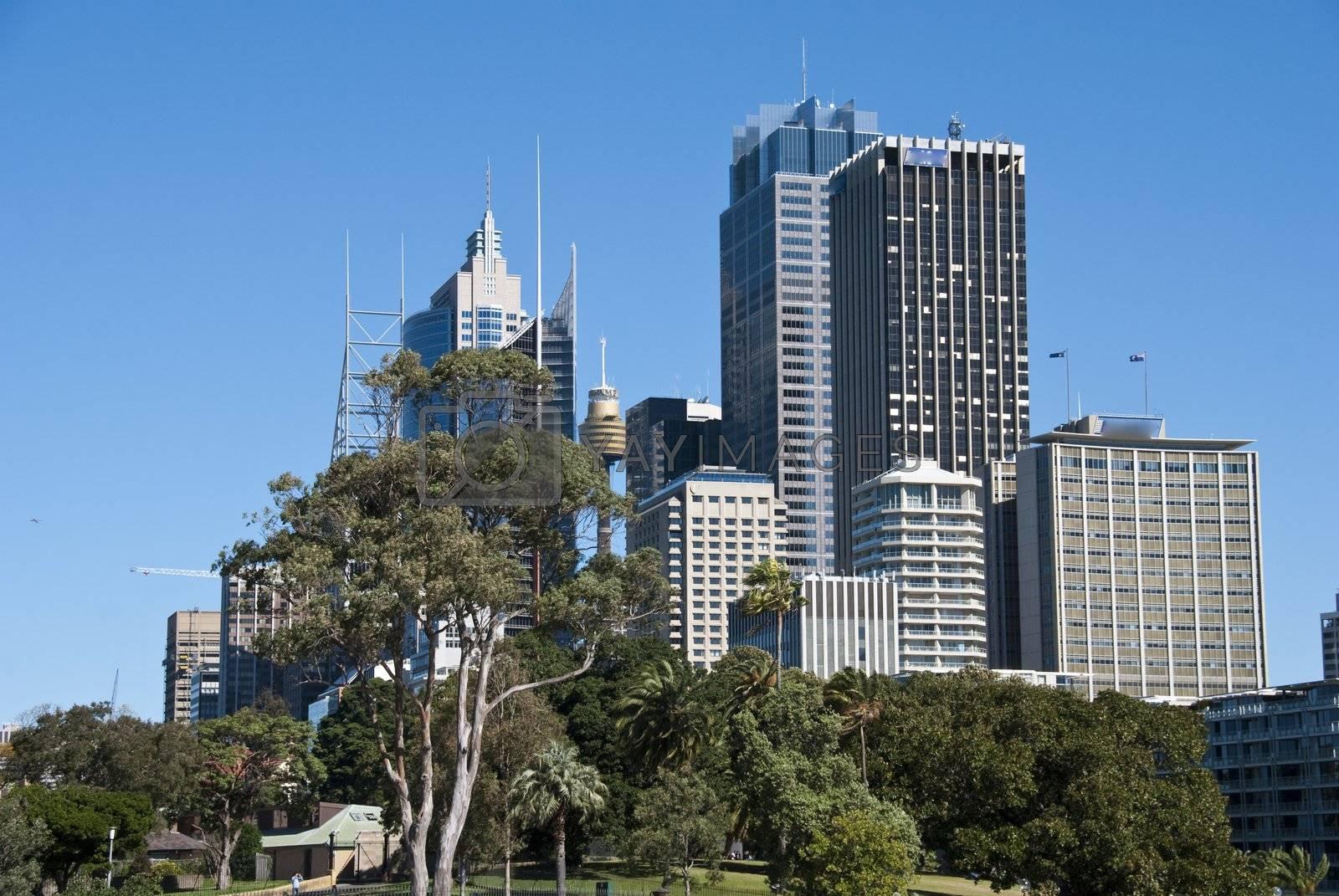 Detail of Sydney on a Winter Morning, Australia by jovannig